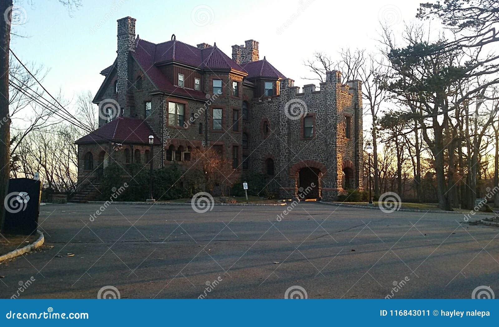 幼兽皮城堡