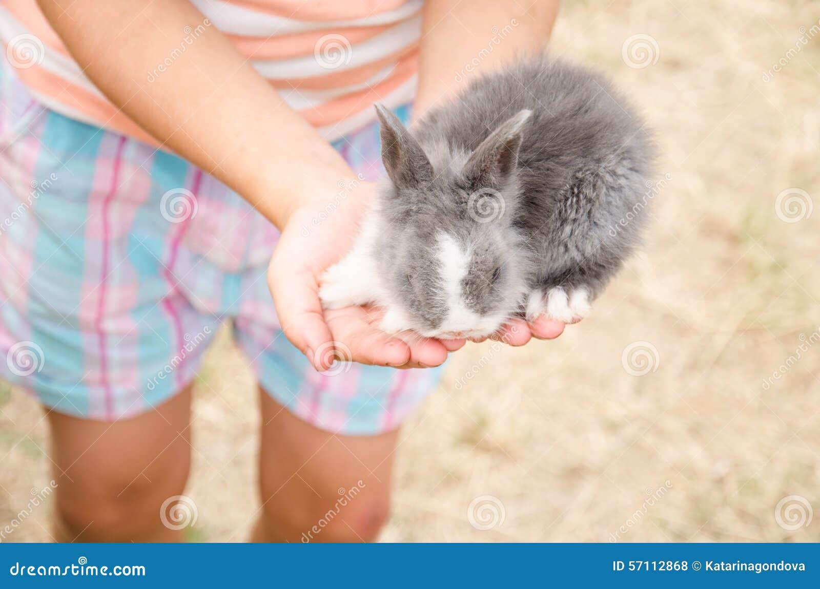 幼交小处女_幼小小兔在手上
