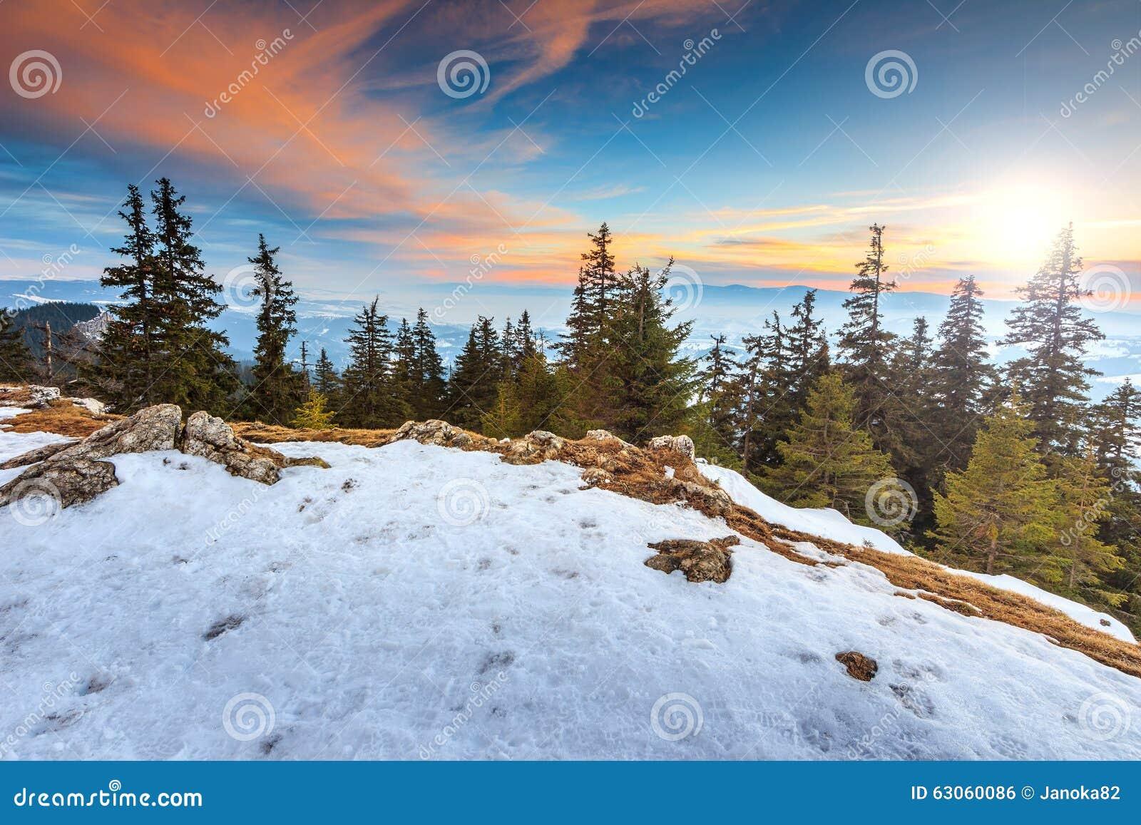 庄严日落和冬天环境美化,喀尔巴汗,罗马尼亚,欧洲图片