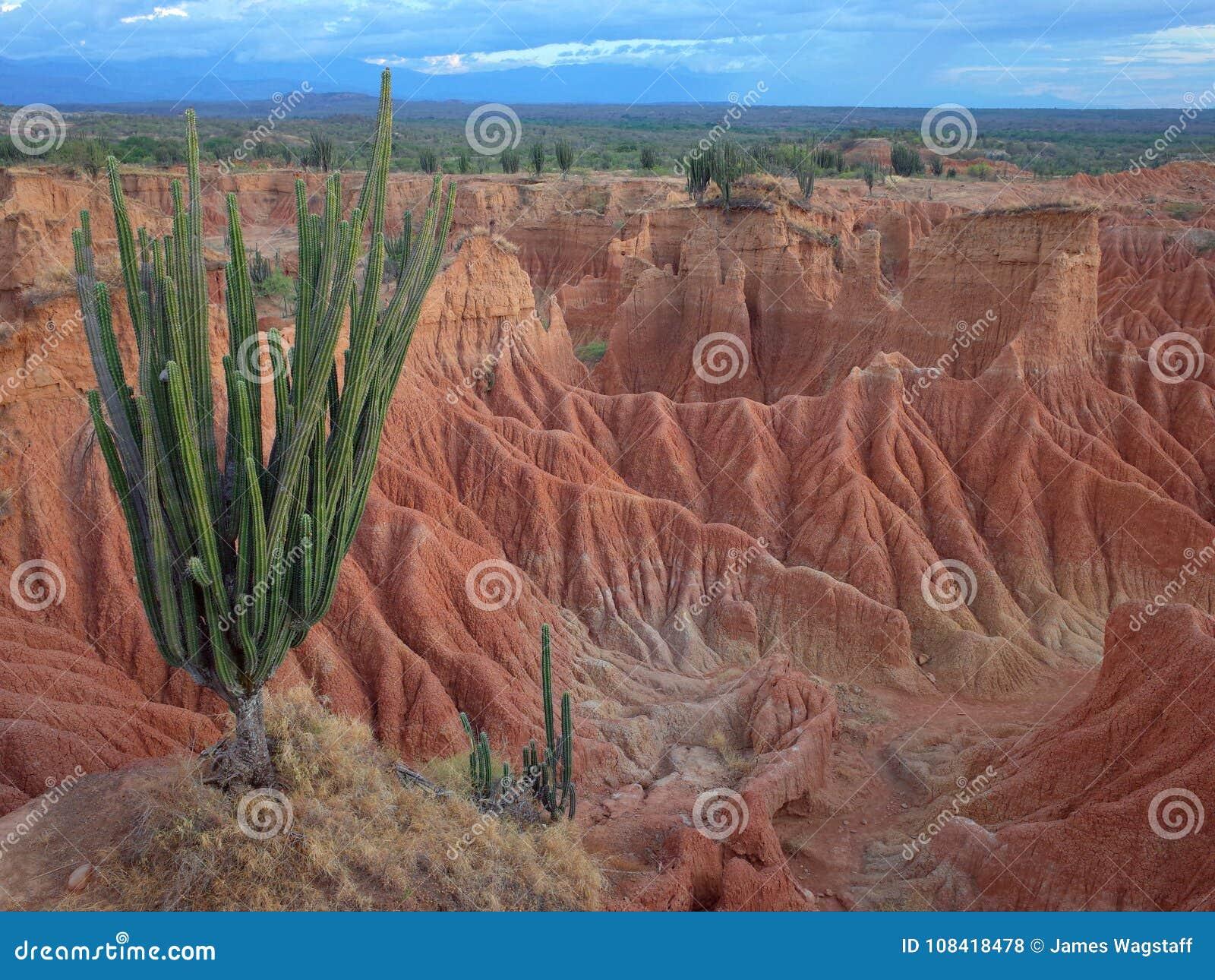 库斯科省火星的风景,红色沙漠,一部分的哥伦比亚` s Tatacoa沙漠