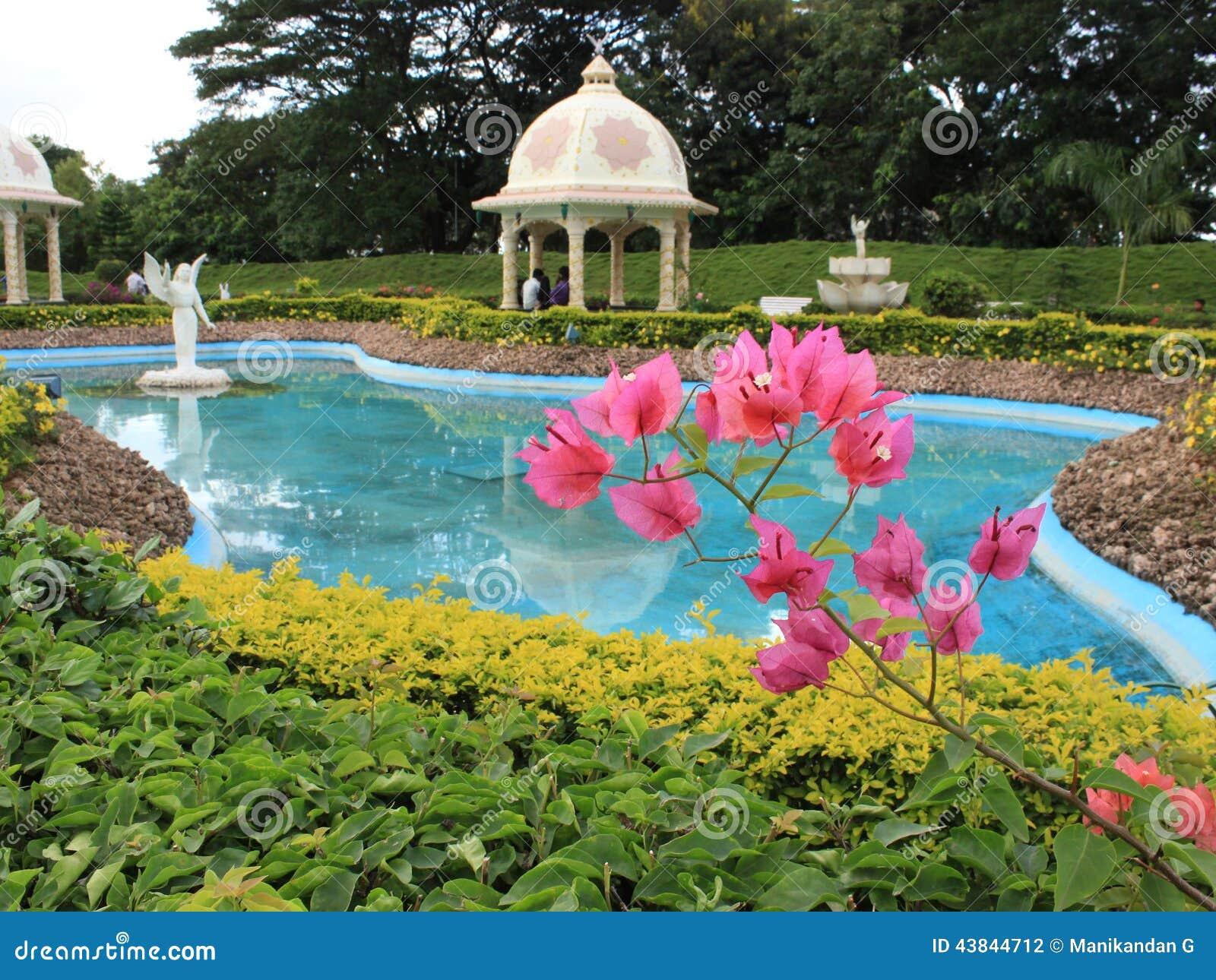 庭院印地安人