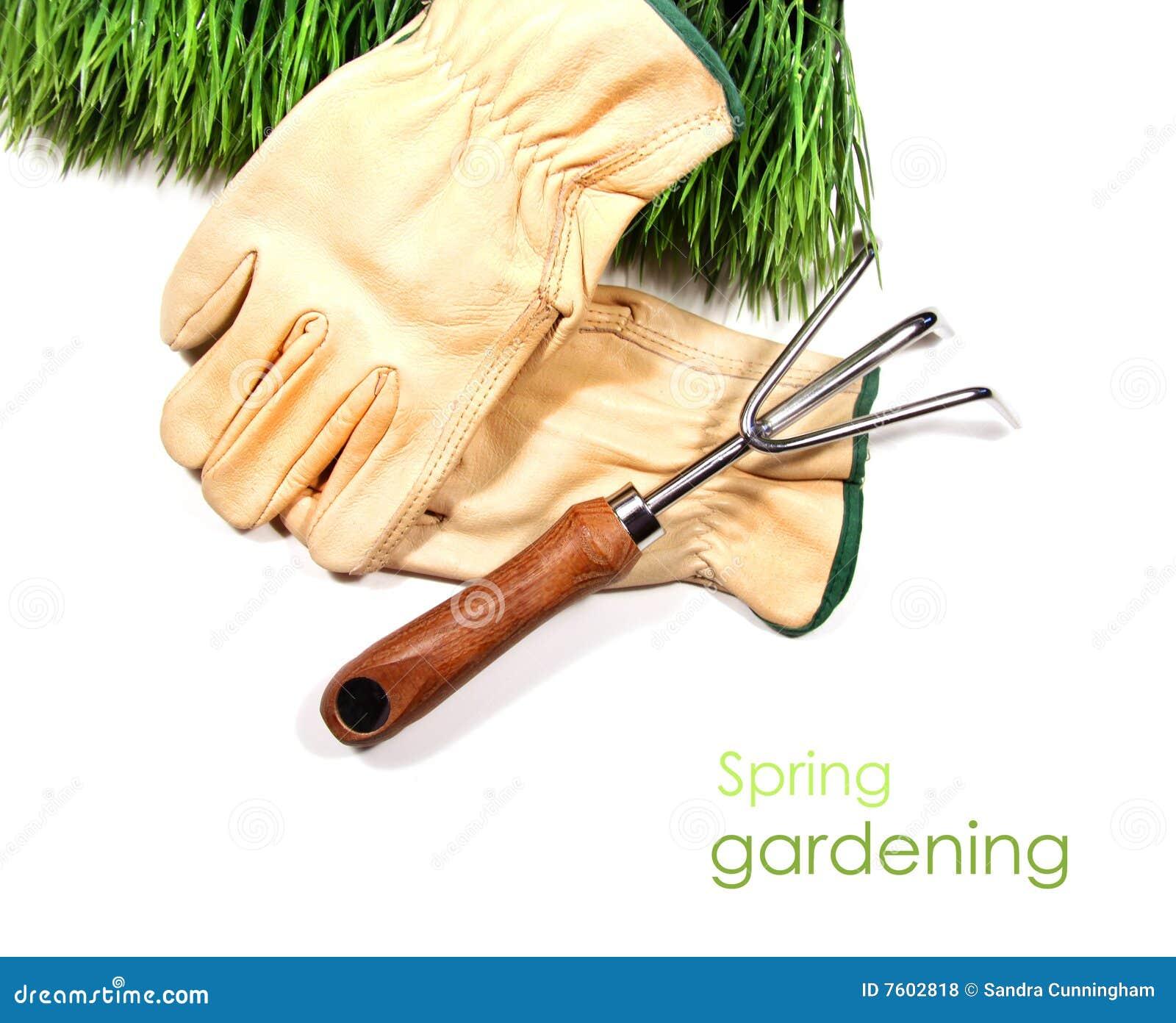 庭院手套草绿色工具