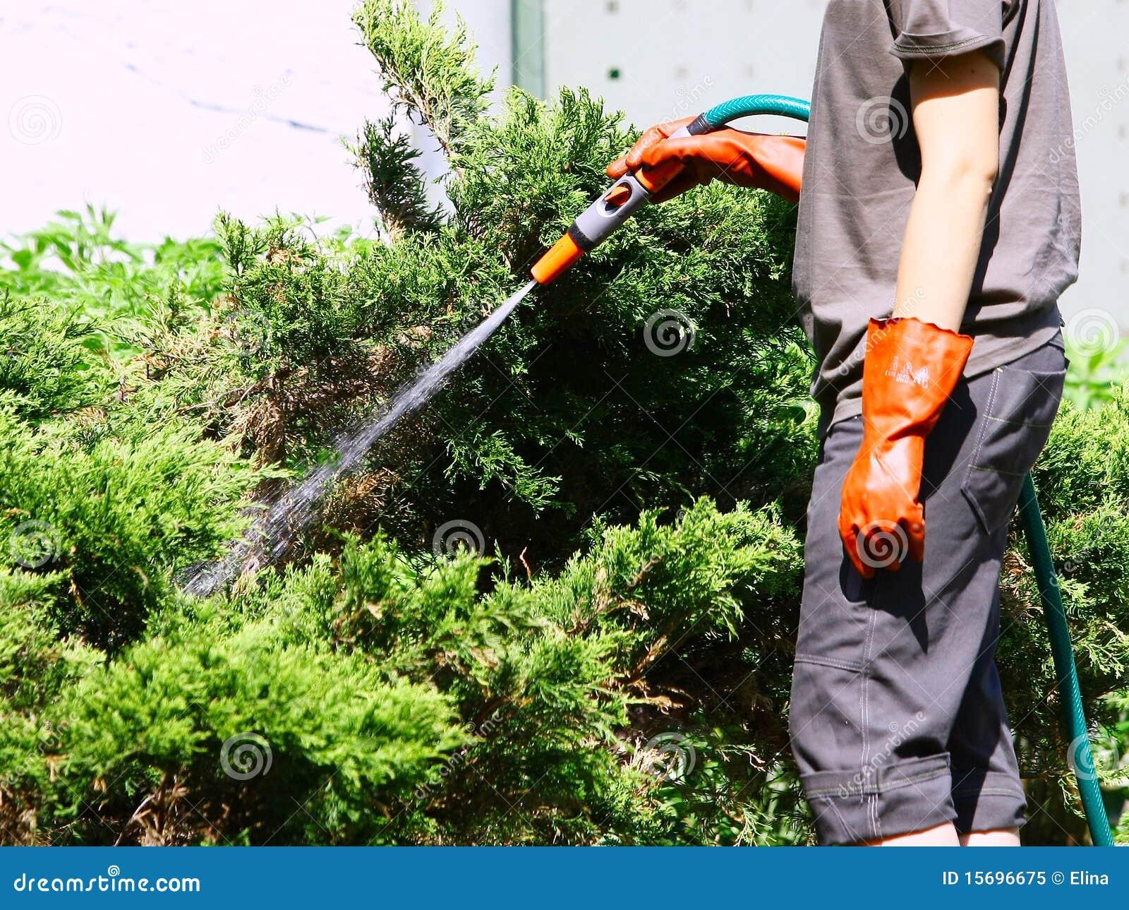 庭院浇灌的工作