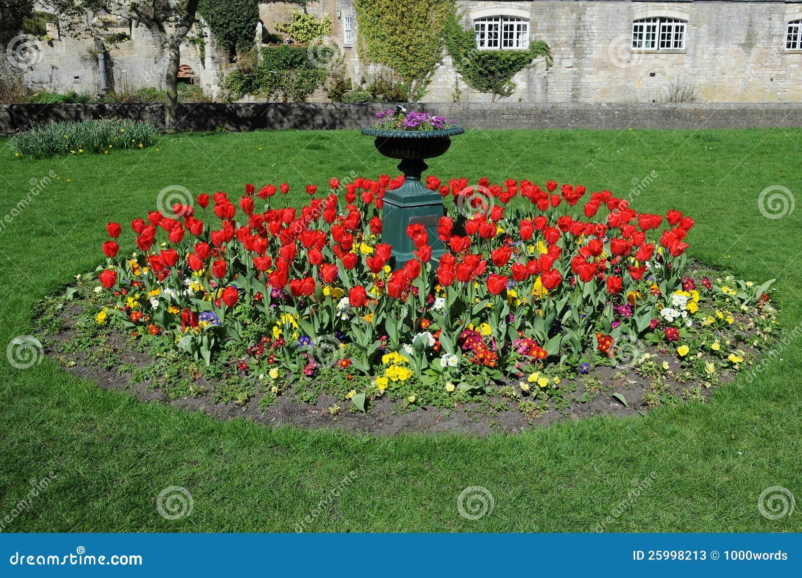 庭院花圃图片
