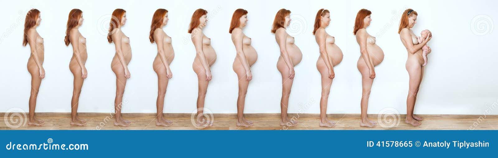 开始拼贴画的孕妇结束,九个月,九stat