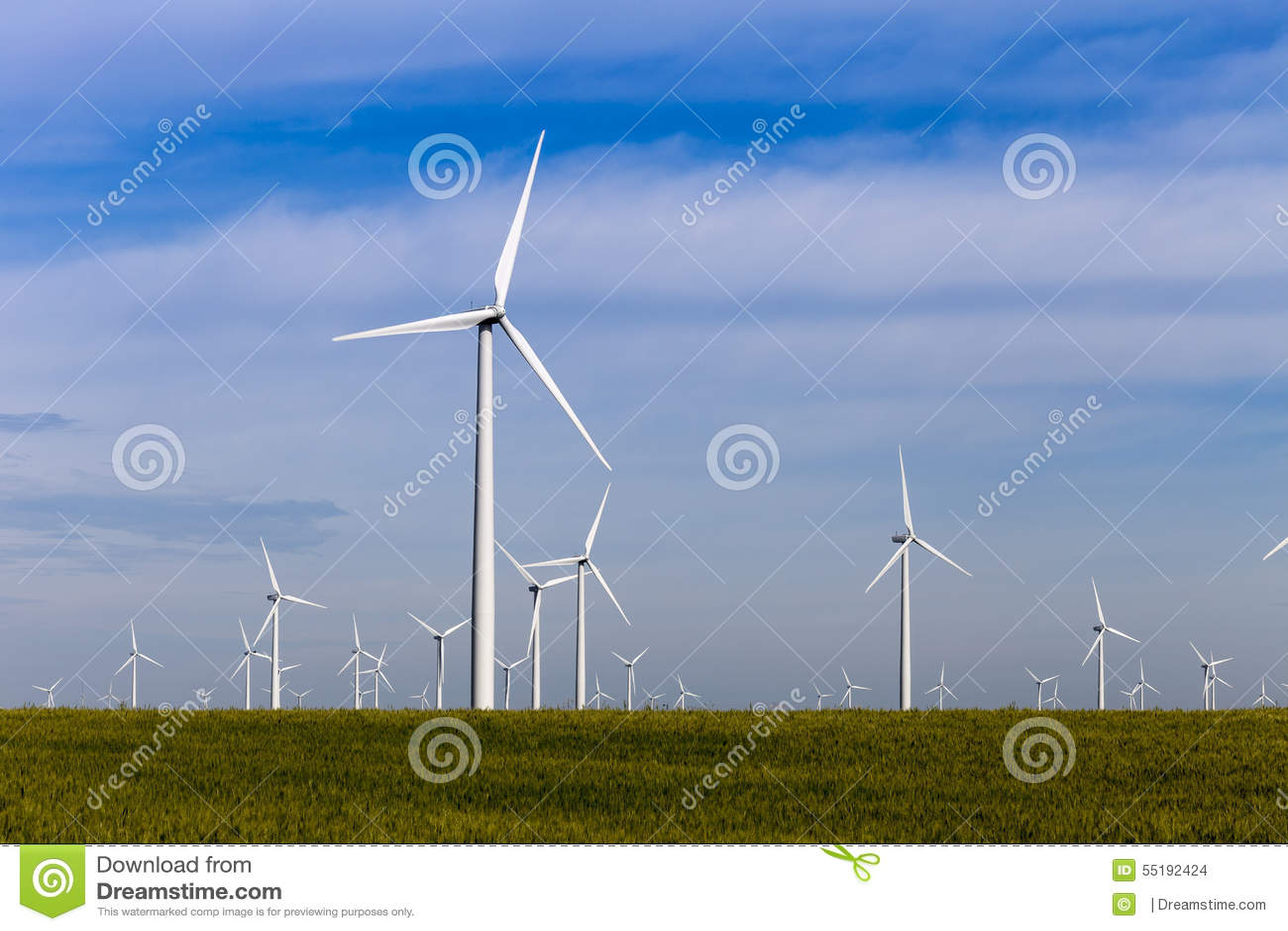 开放大草原的风力场