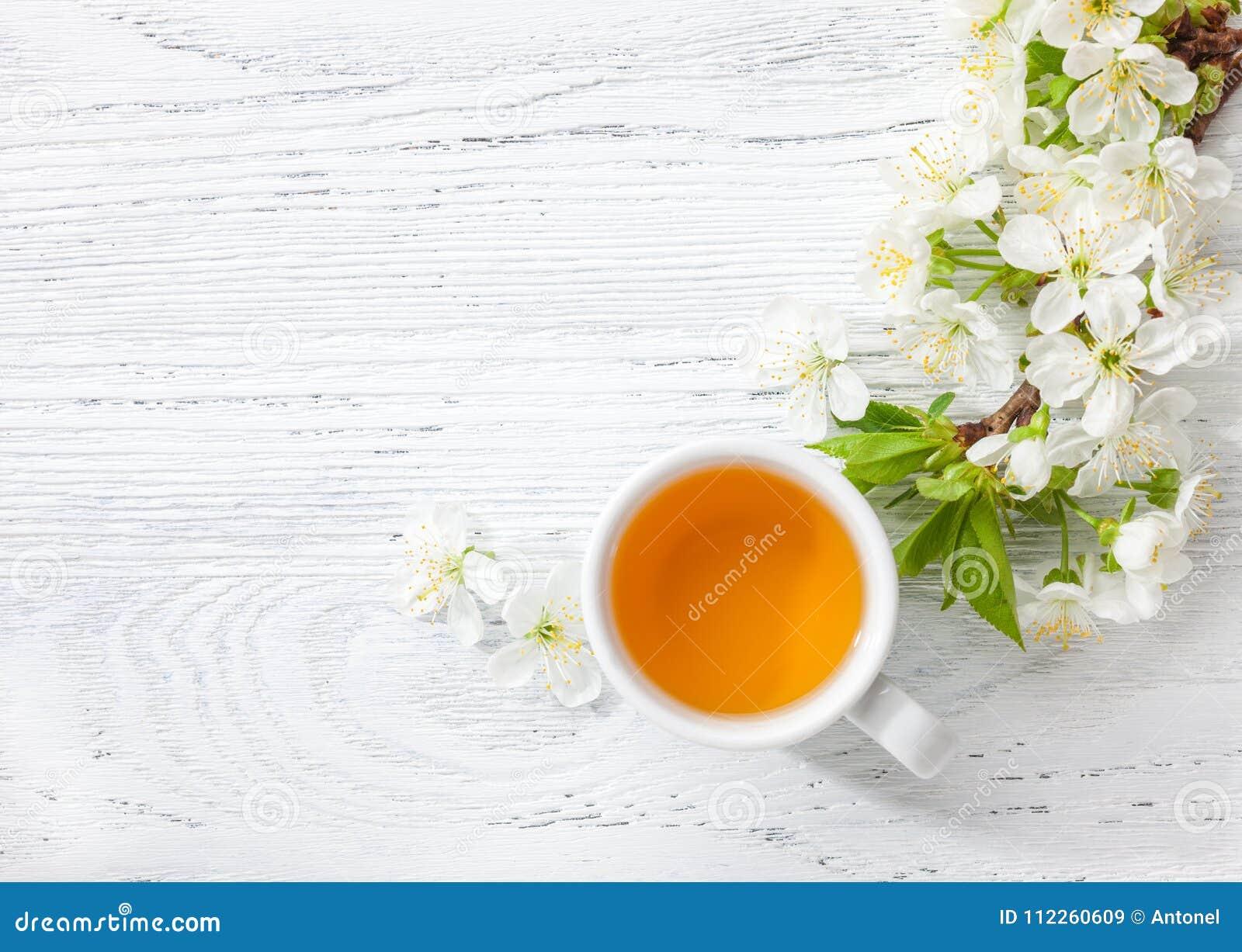 开花樱桃杯绿茶和分支在白色木桌上的