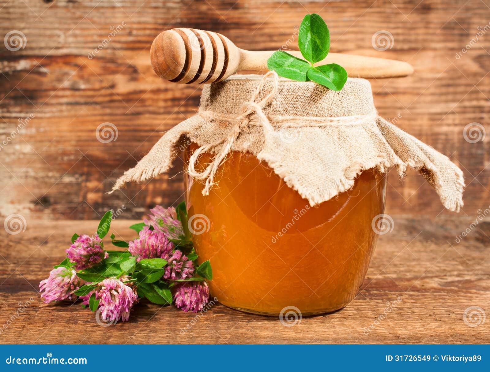 从开花的三叶草的甜蜂蜜