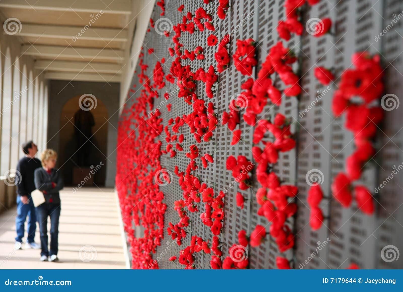 开花纪念墙壁战争