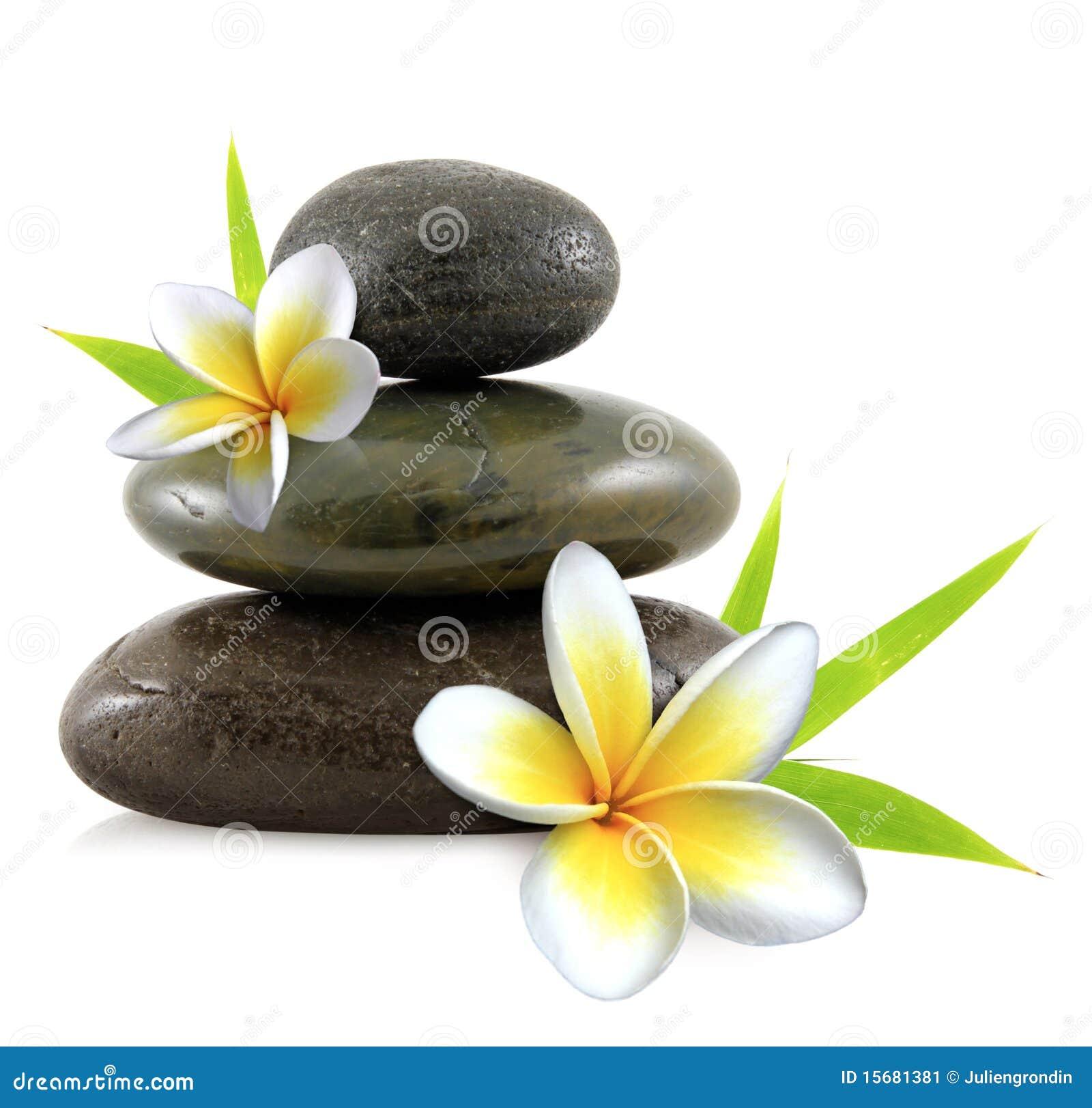 开花羽毛温泉石头