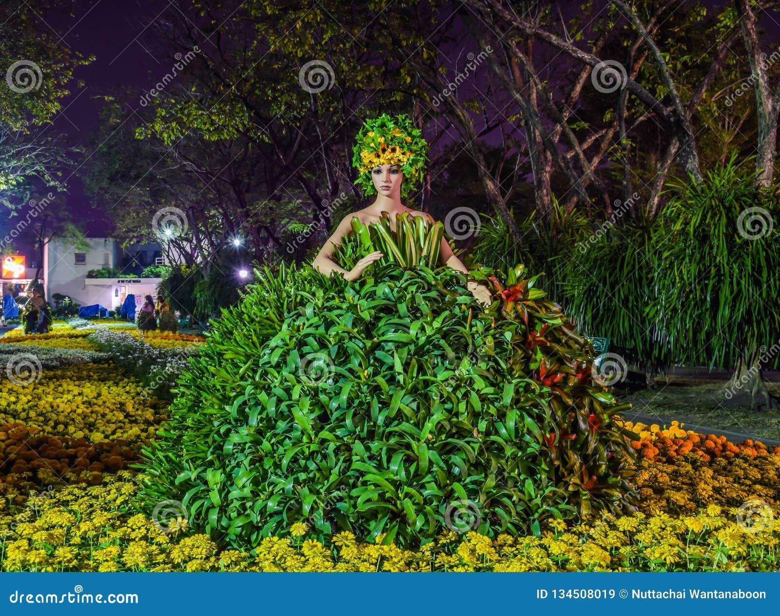 式样-女性玩偶佩带的树礼服在夜