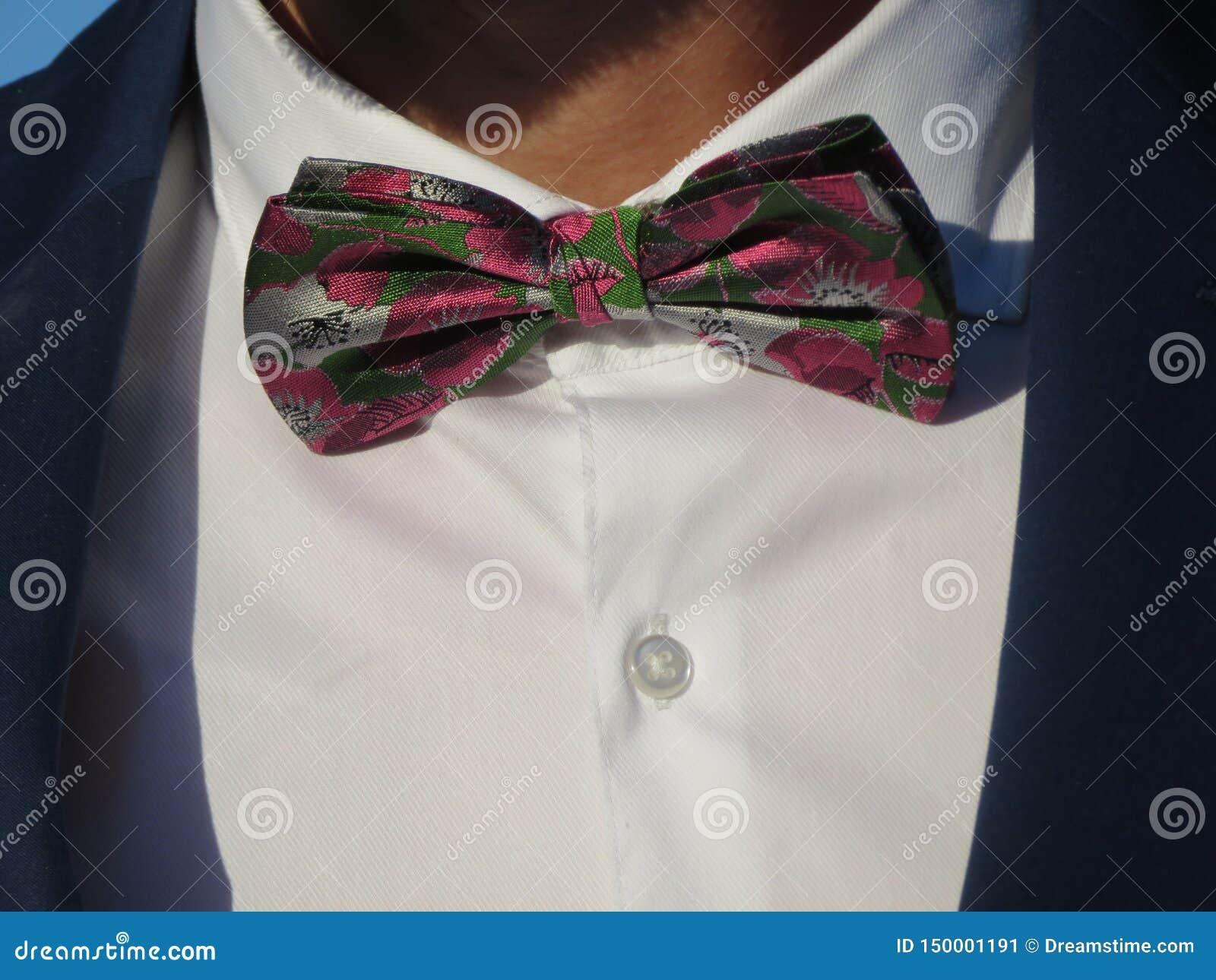 强烈的颜色的骑士的美丽蝶形领结和非常谨慎