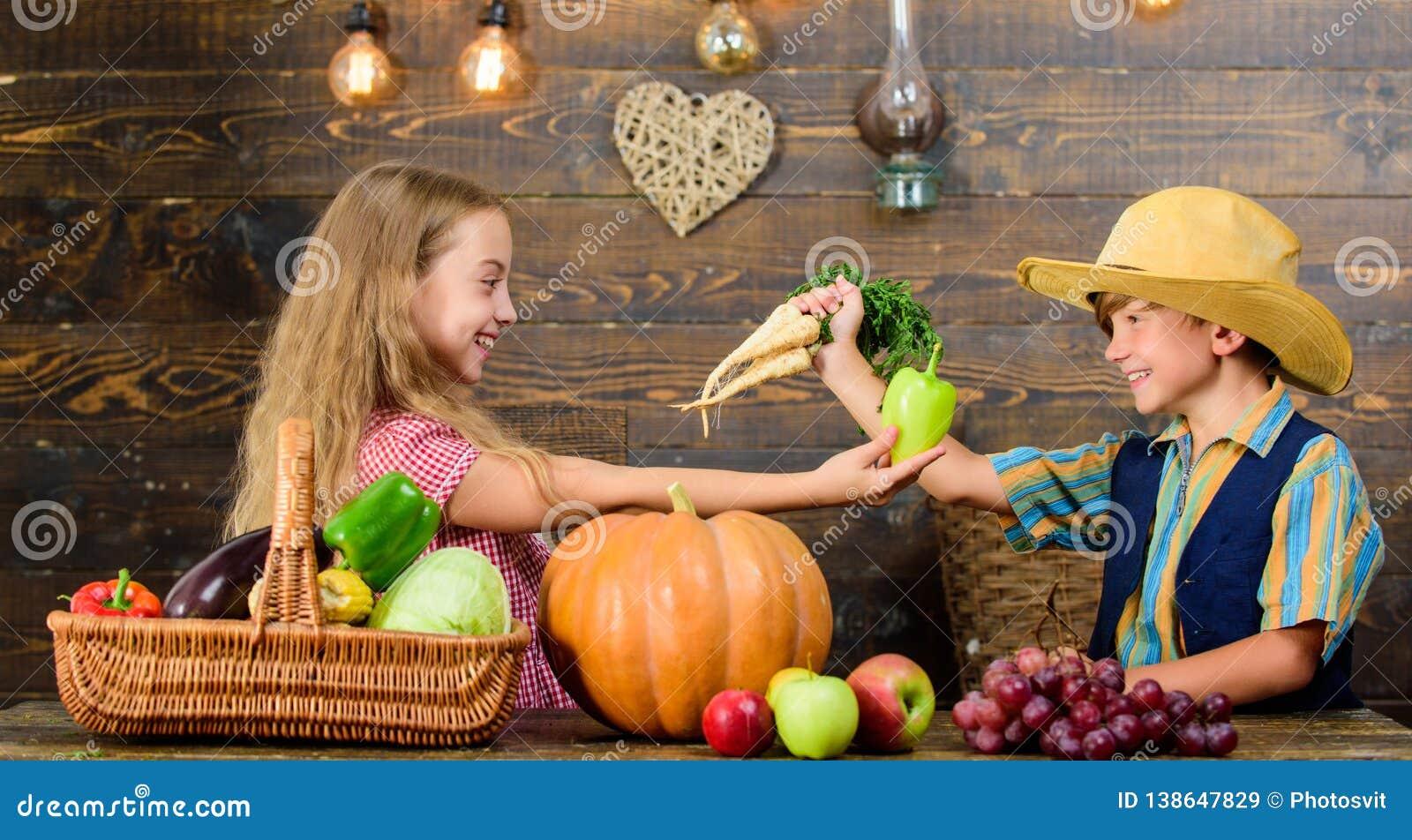 当前农厂收获木背景的孩子 孩子农夫菜收获种田的女孩男孩在哪里教孩子
