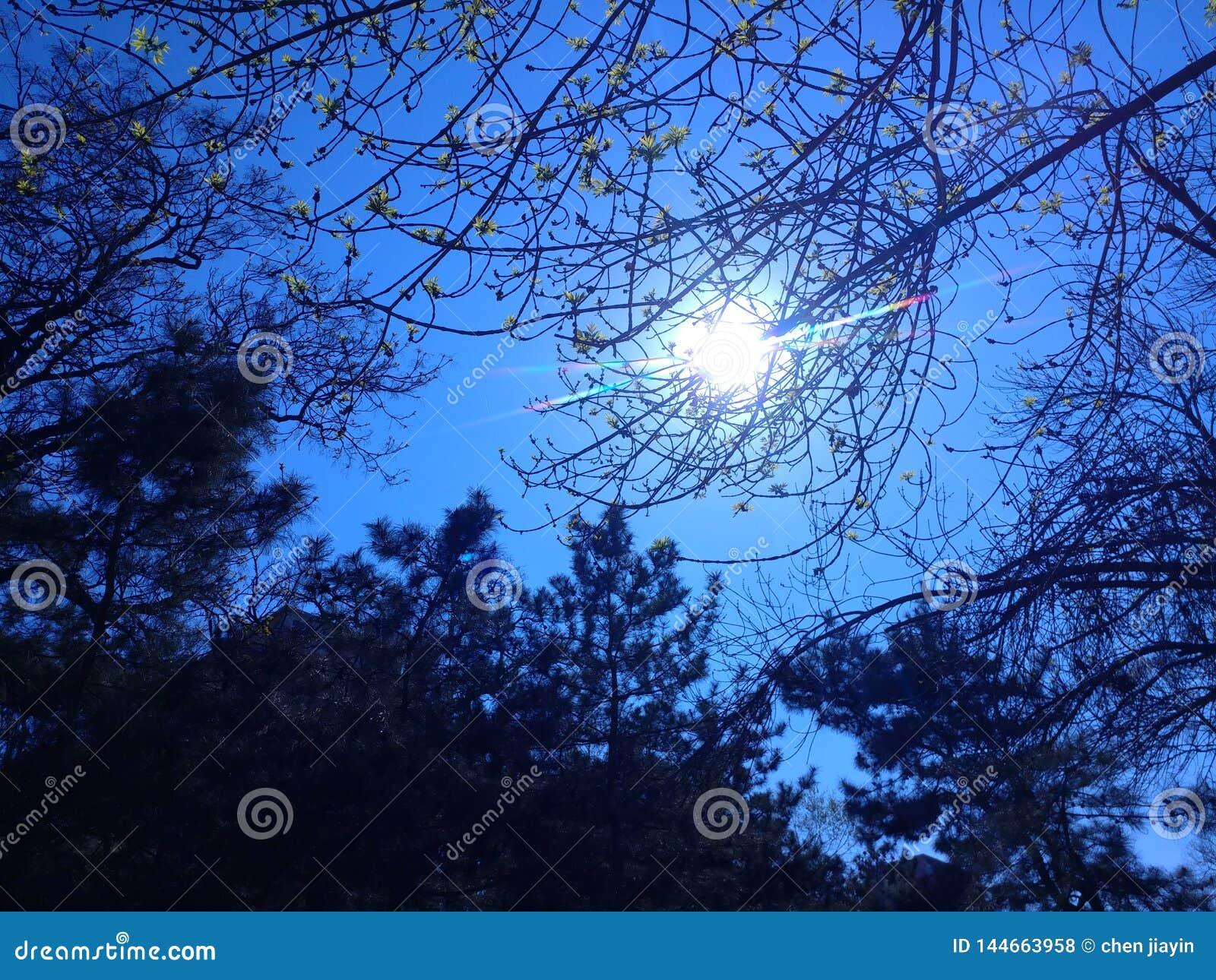 当您面对太阳,you';ll发现它的光