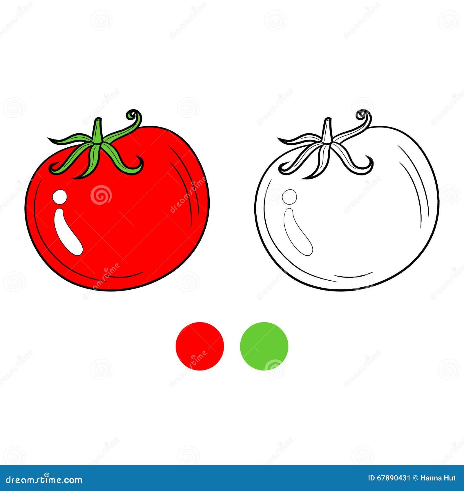 彩图蕃茄,比赛的孩子布局