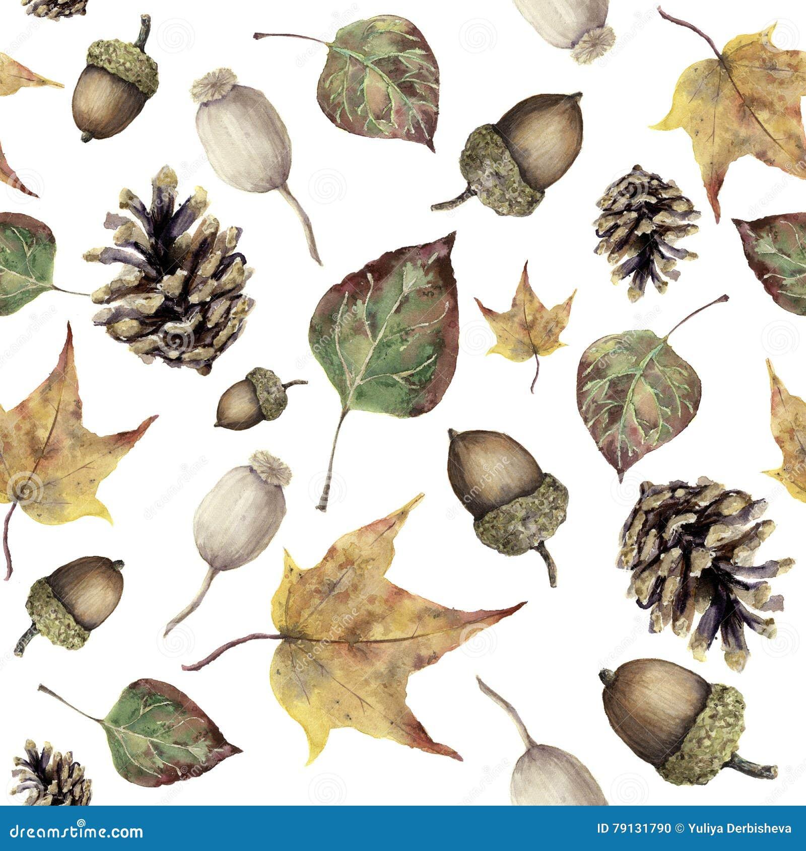 水彩秋天森林无缝的样式 手画杉木锥体、橡子、莓果和黄色和绿色秋天离开