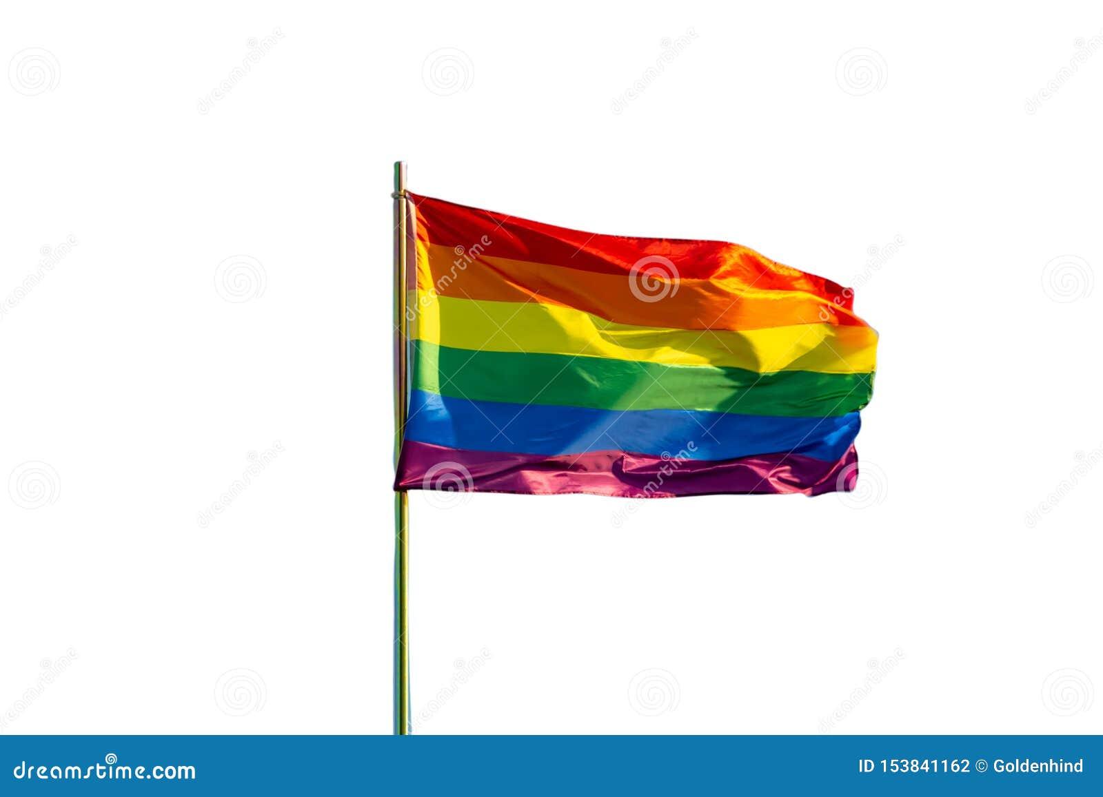 彩虹在白色背景隔绝的同性恋自豪日旗子