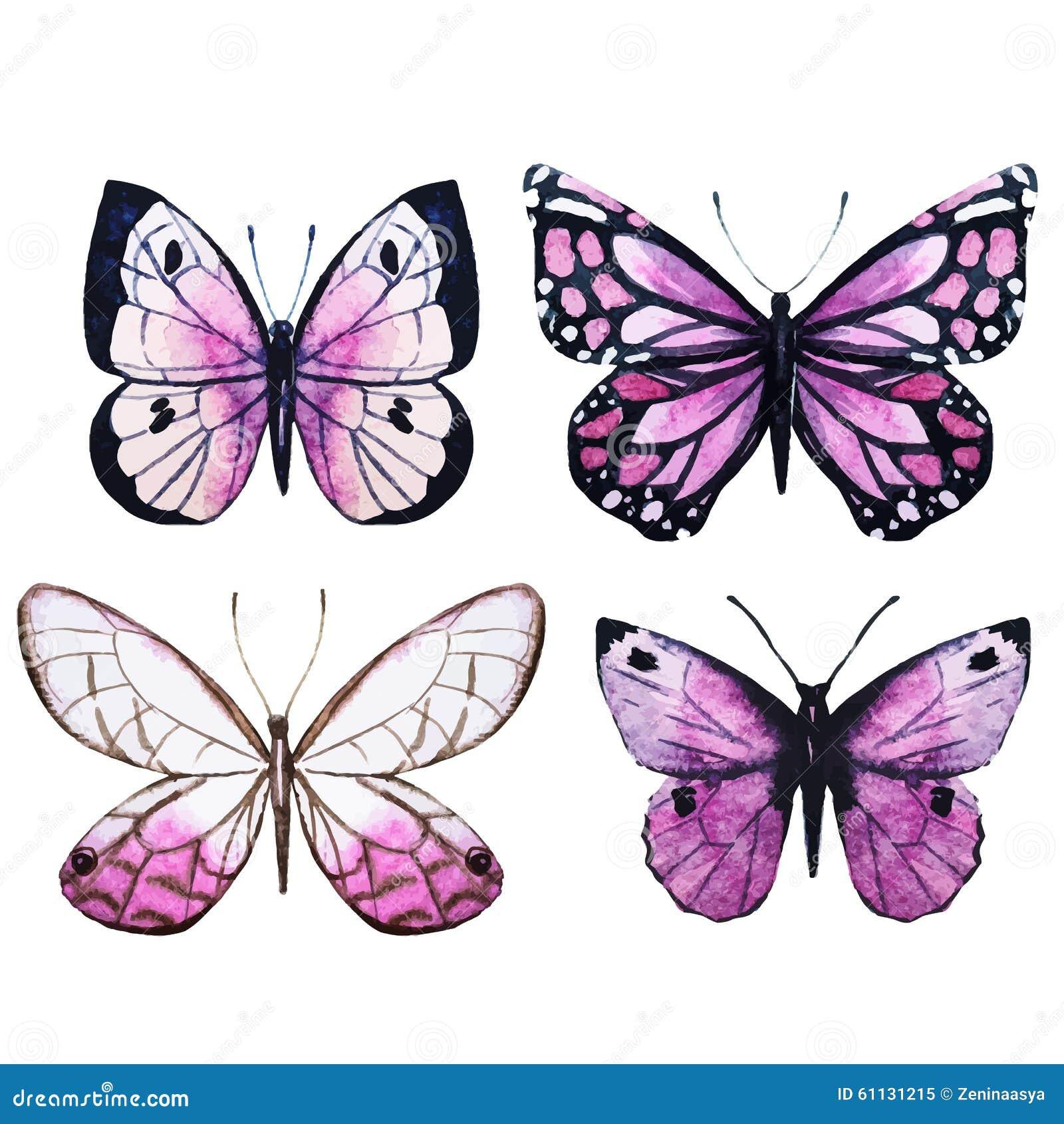 与好的水彩蝴蝶的美好的传染媒介图象.图片