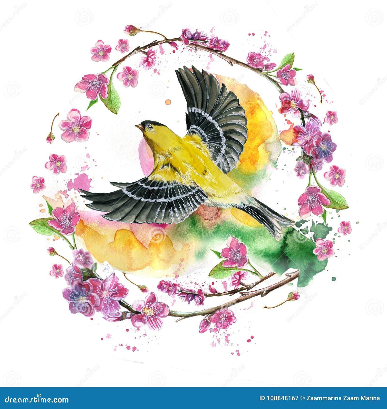 得出在春天,热,奥廖拉诺飞行一个象麻雀的舰队的鸟的例证题材的水彩无缝的样式