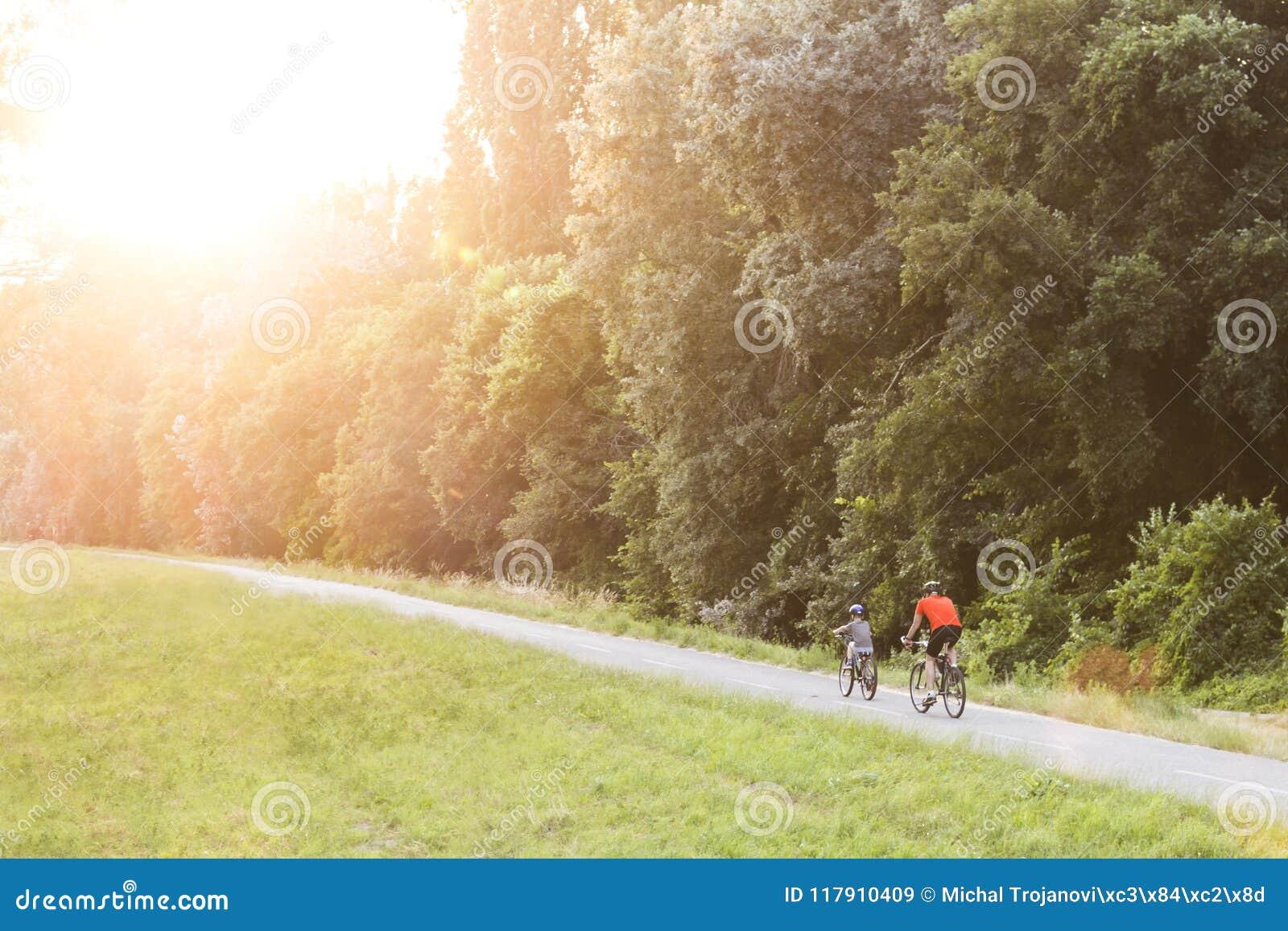 循环在一条道路的一个森林里的父亲和儿子在与美丽的照明设备透镜的日落飘动