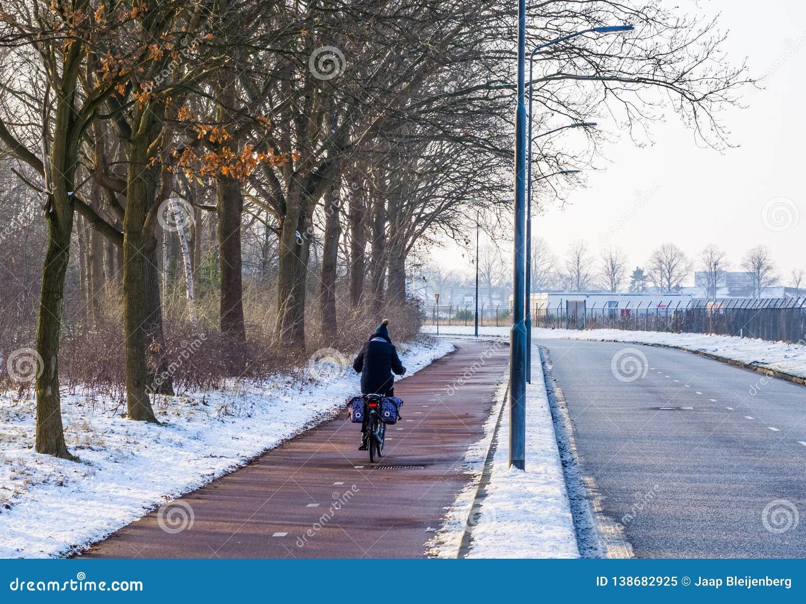 循环在路的骑自行车者在冬天季节期间在荷兰