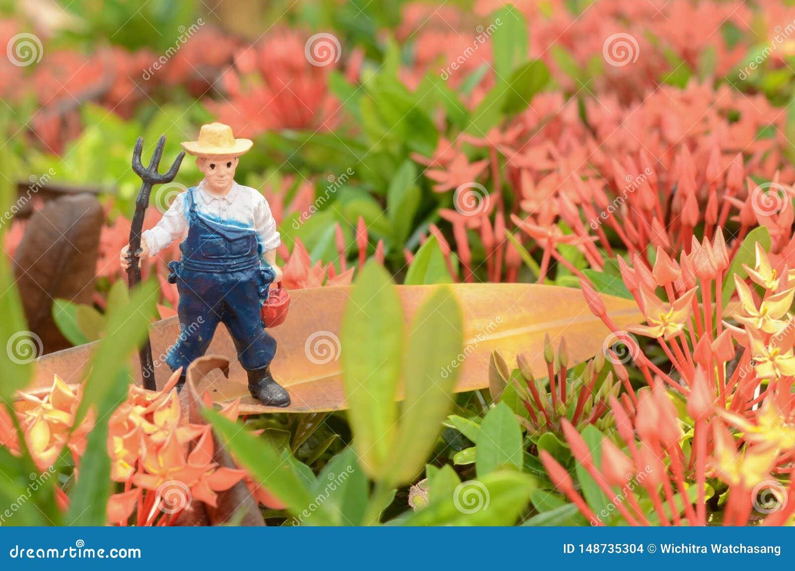 微型农业人在公园