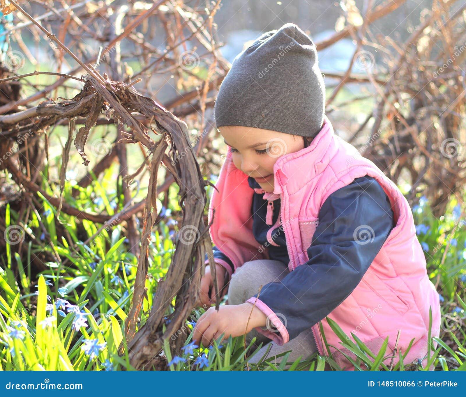 微笑盖帽的温暖地加工好的女孩坐她的在蓝色snowdrops中花的膝盖在葡萄园里