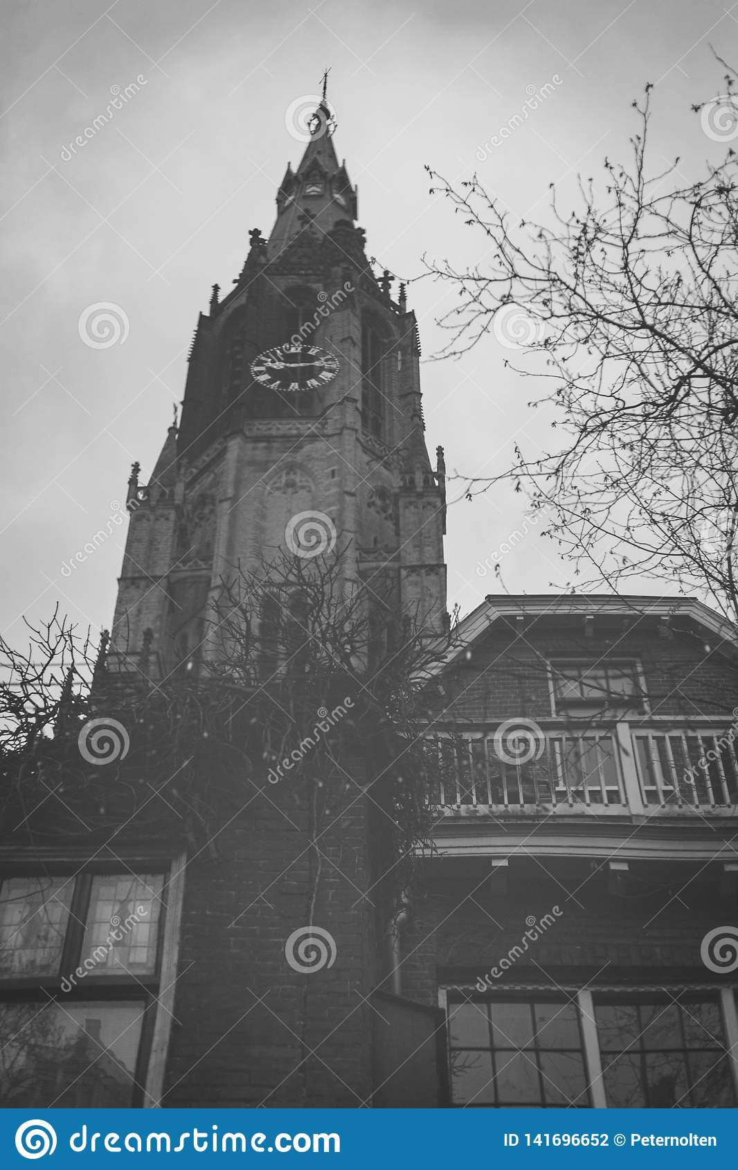 德尔福特,荷兰- 2019年1月6日:在塔新教堂,新的教会的运河的反射,在老市中心
