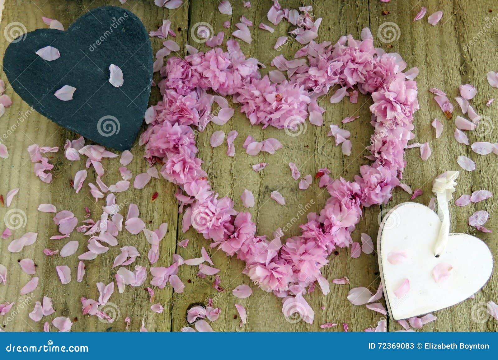 心脏和开花