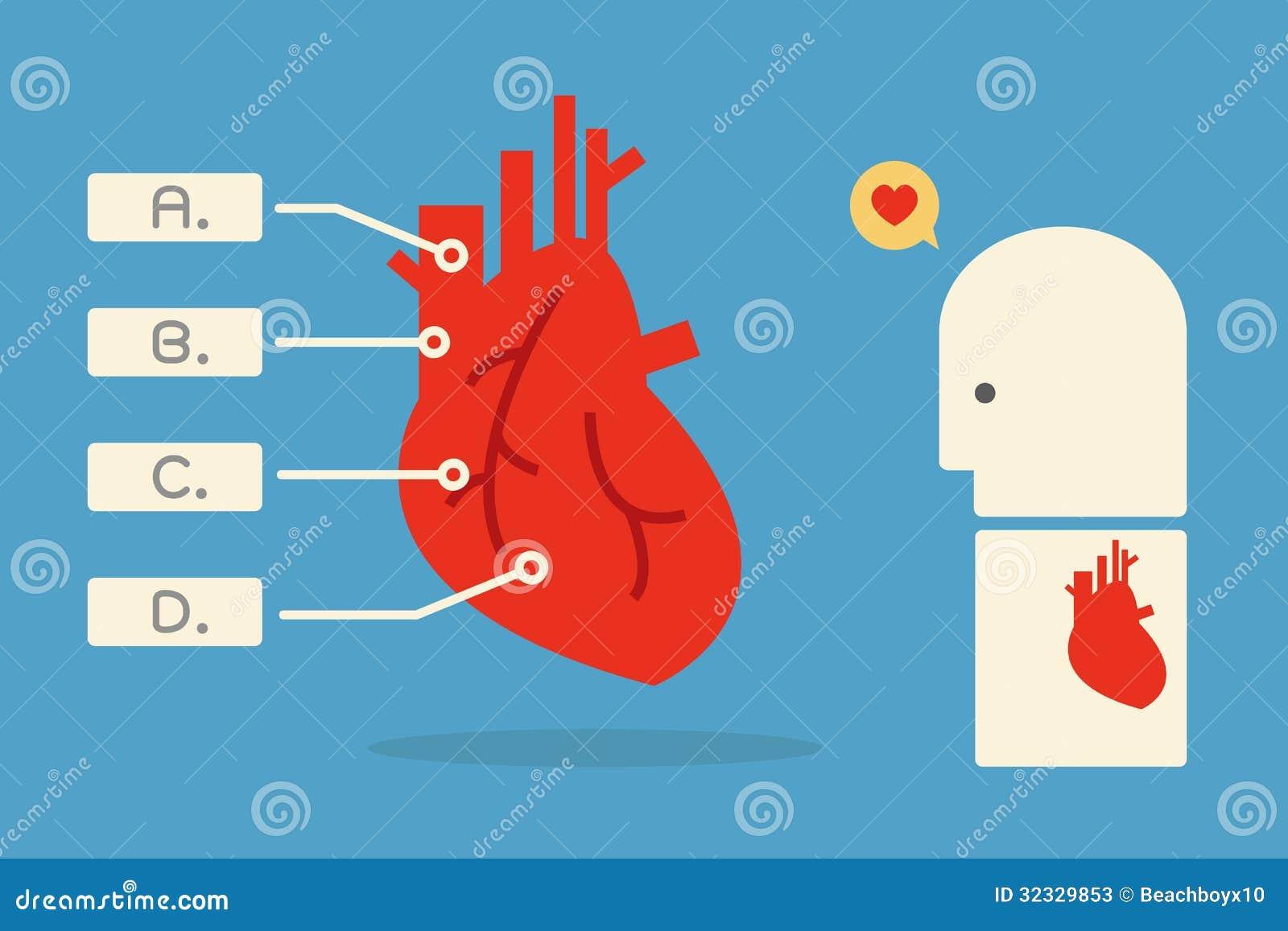 心脏infographics最小的设计,.图片