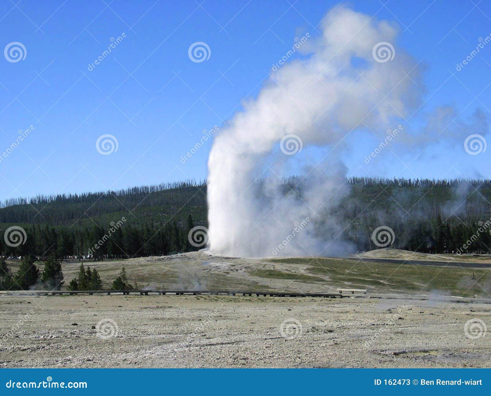 忠实的喷泉国家老公园怀俄明黄石