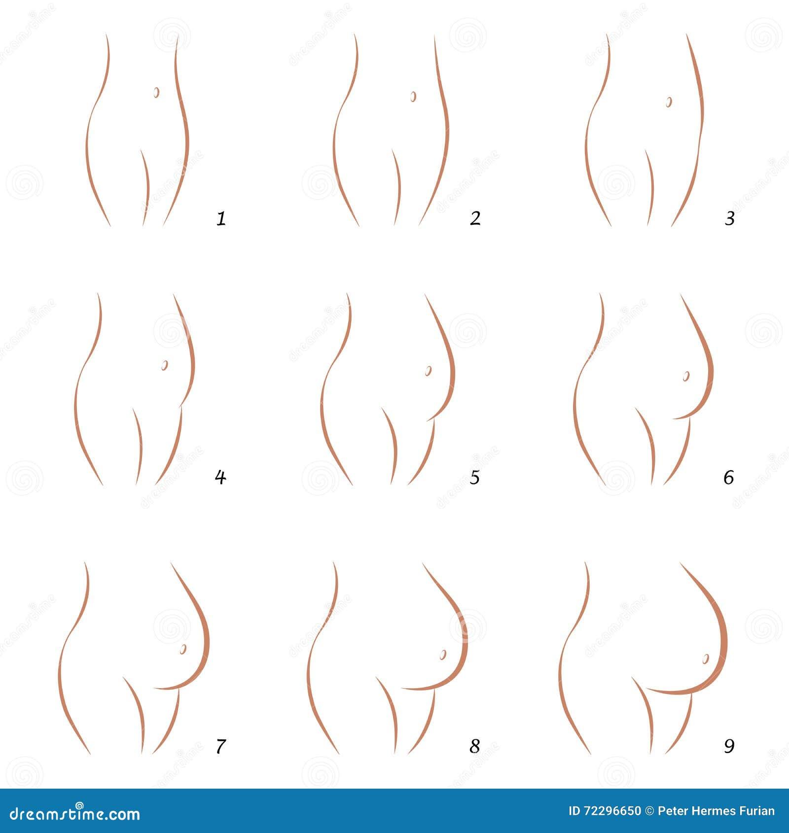 怀孕成长腹部序列九步