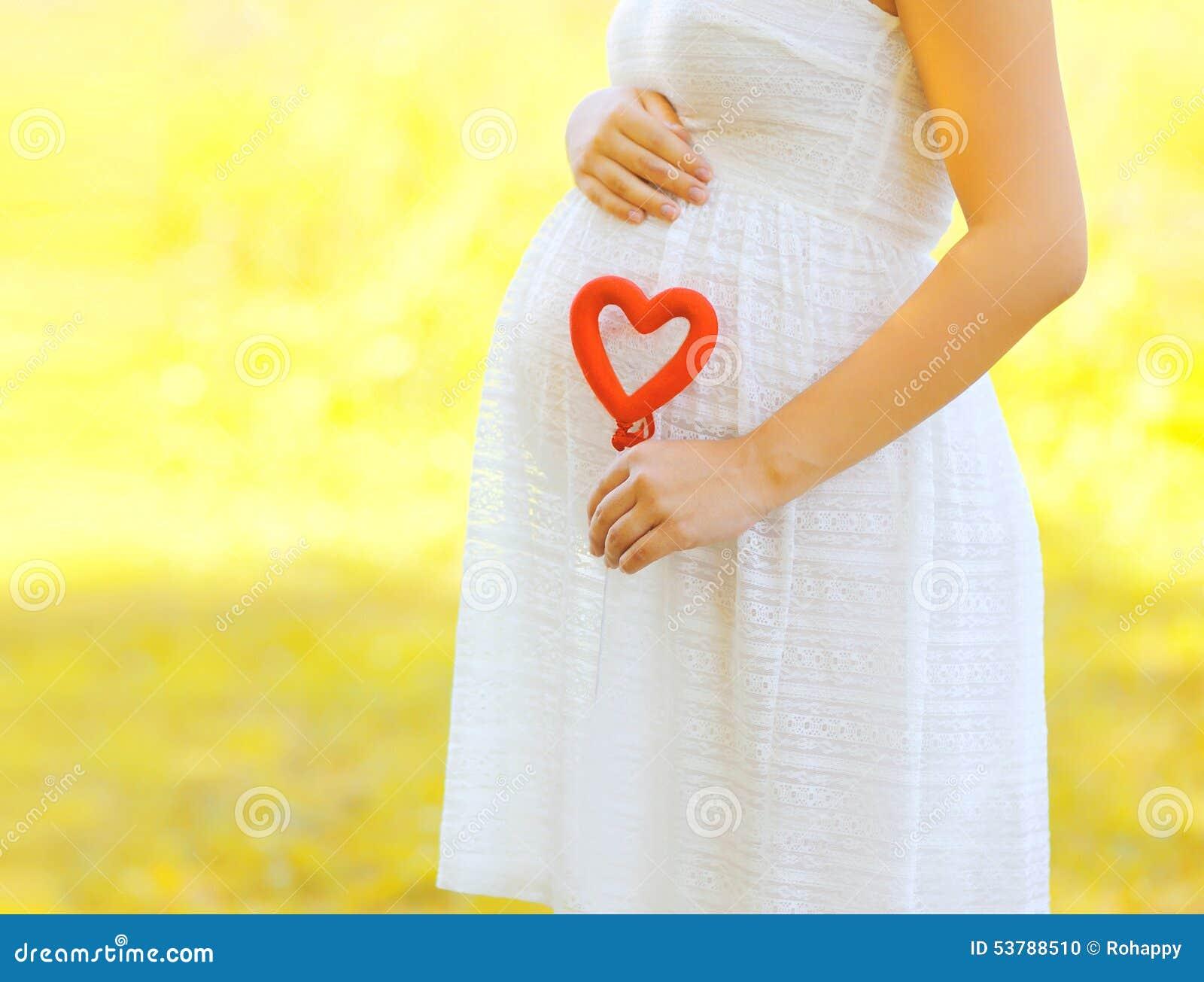 怀孕,产科和新的家庭观念-孕妇