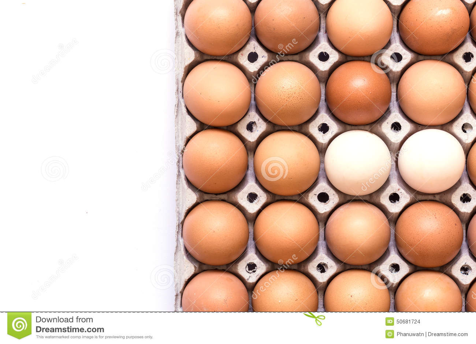 Download 怂恿载纸盘 库存照片. 图片 包括有 纸板, 新鲜, 健康, 营养, 编号, 鸡蛋, 食物, 背包, 敌意 - 50681724