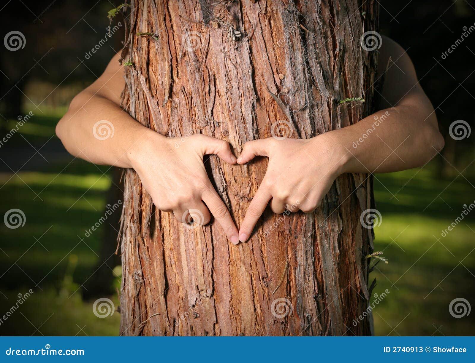 恋人结构树