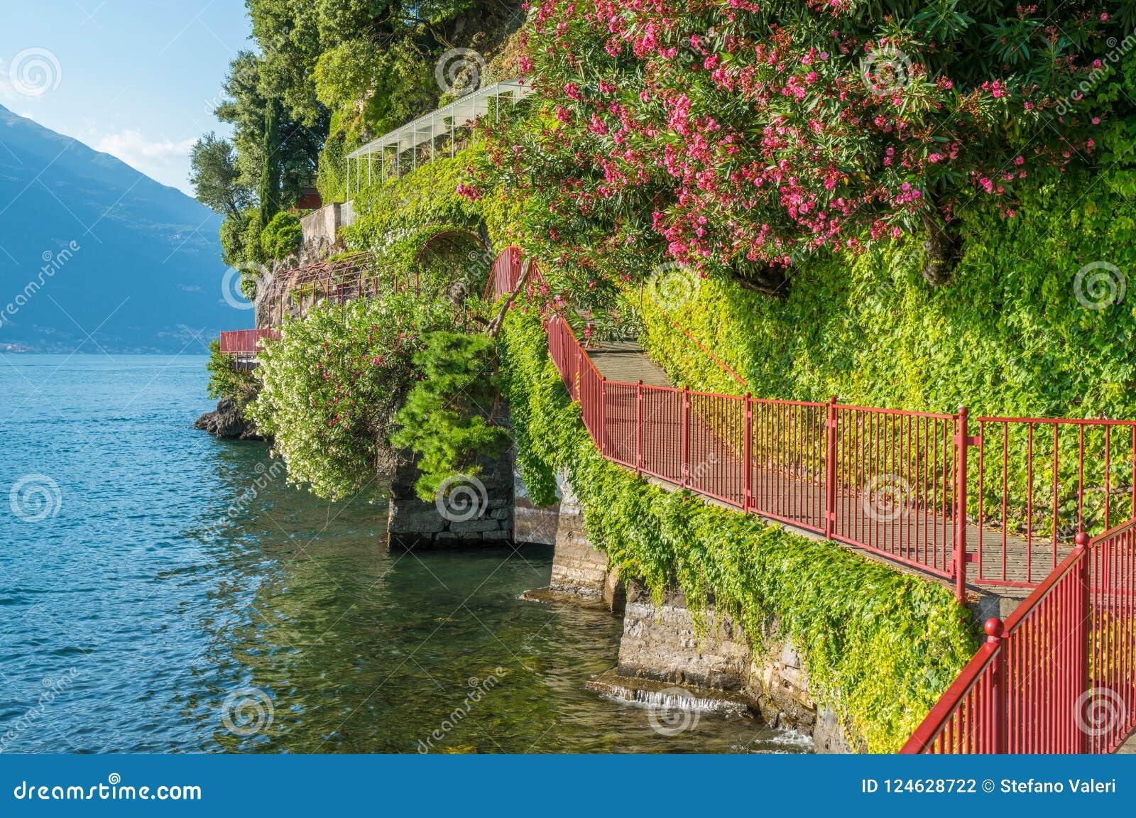 恋人`风景`步行在瓦伦纳,科莫湖 意大利伦巴第