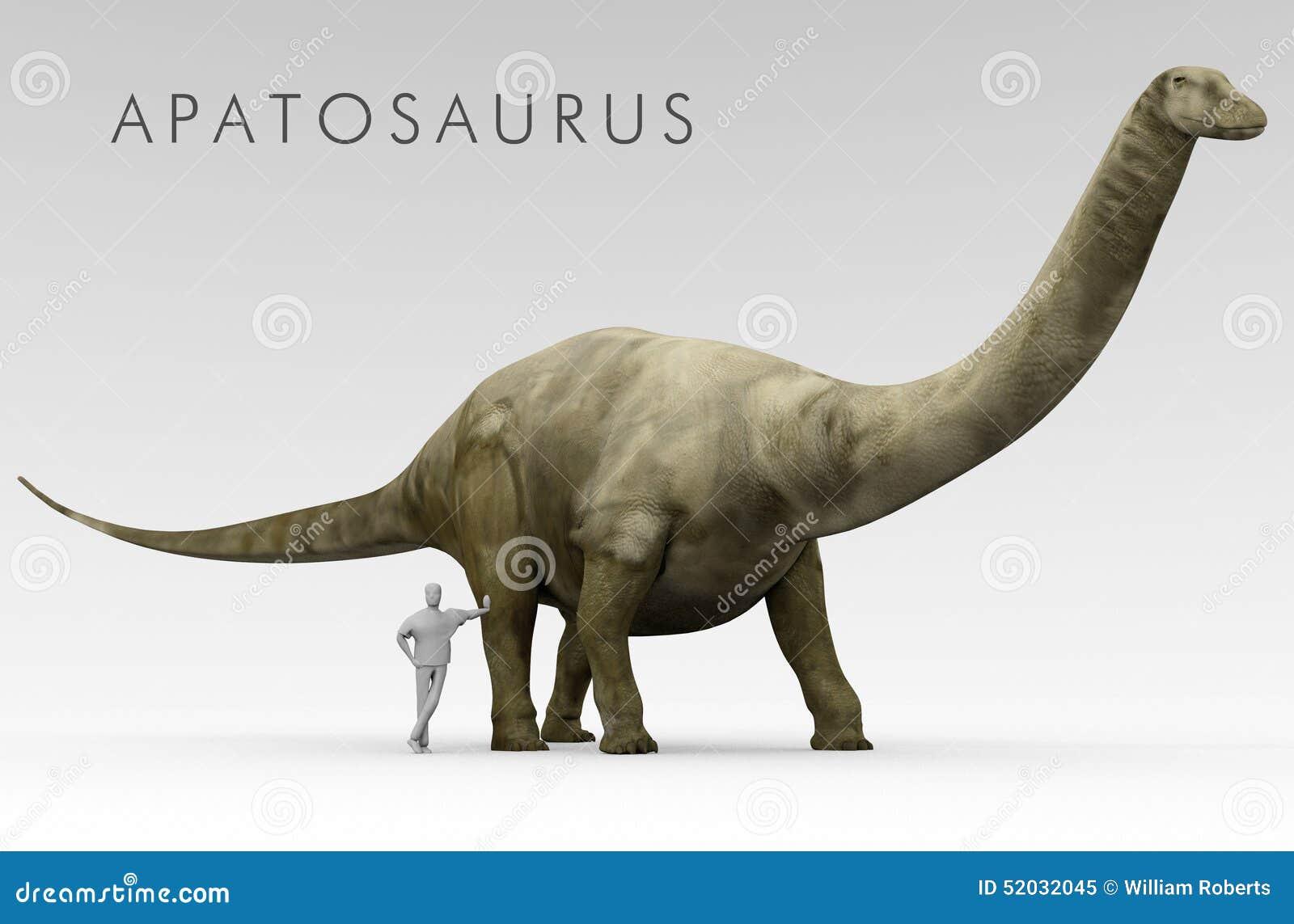 恐龙雷龙属和人大小比较
