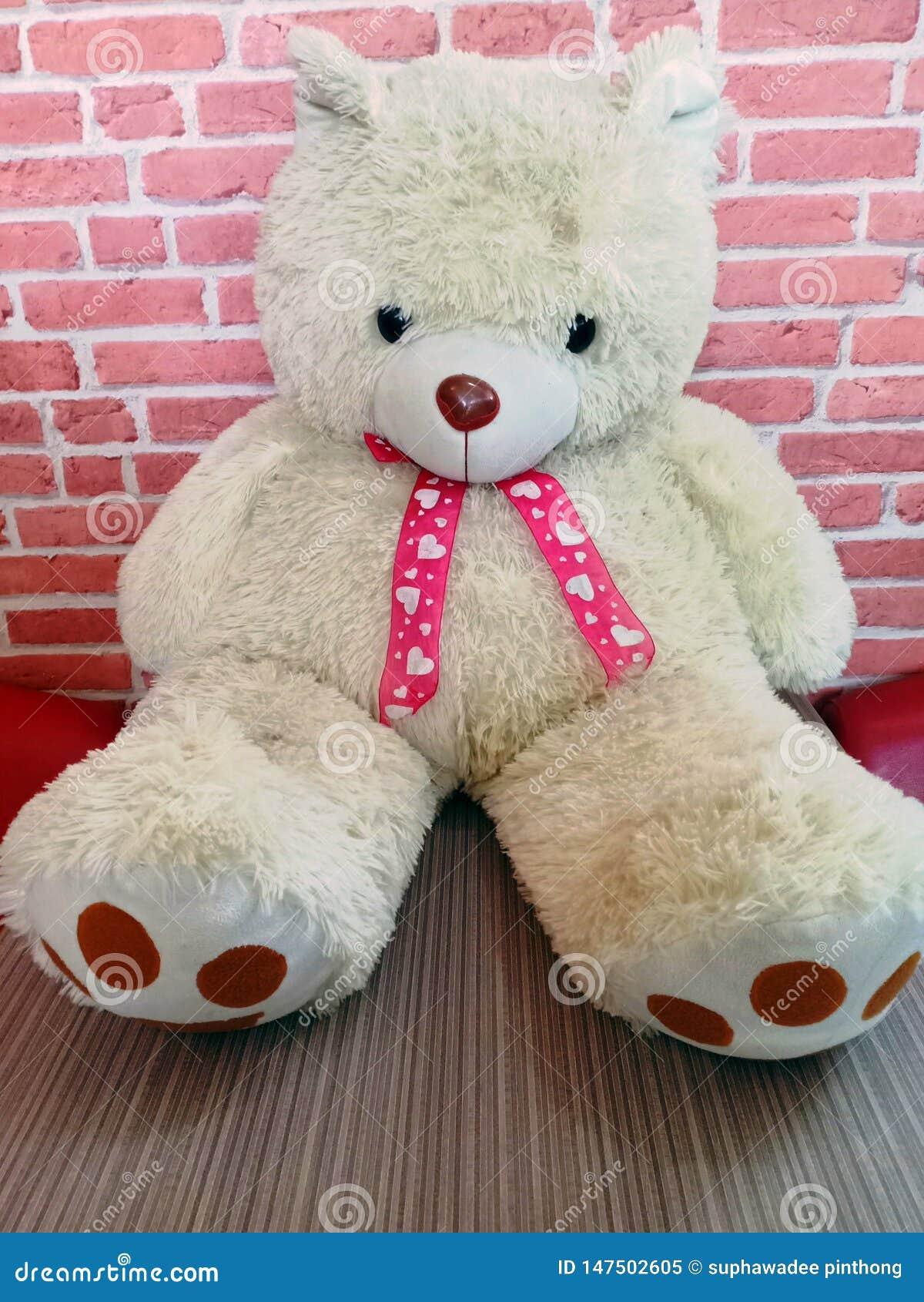 您的华伦泰的白色玩具熊