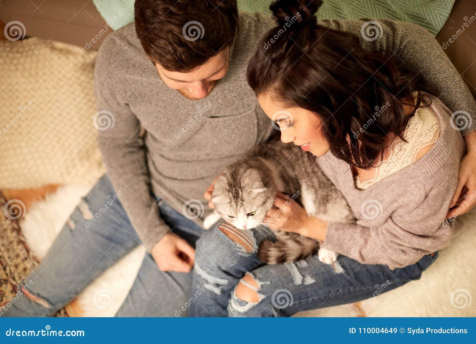 愉快的加上猫在家