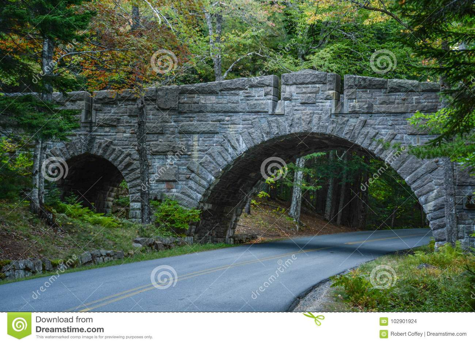 慢车道桥梁