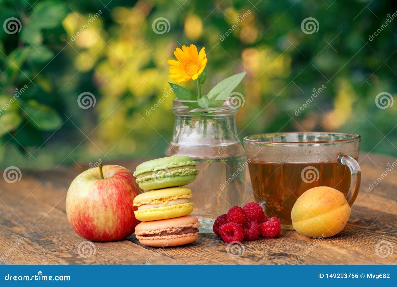 成熟果子、金盏草花与一个词根在一个玻璃烧瓶,蛋白杏仁饼干和杯子绿茶