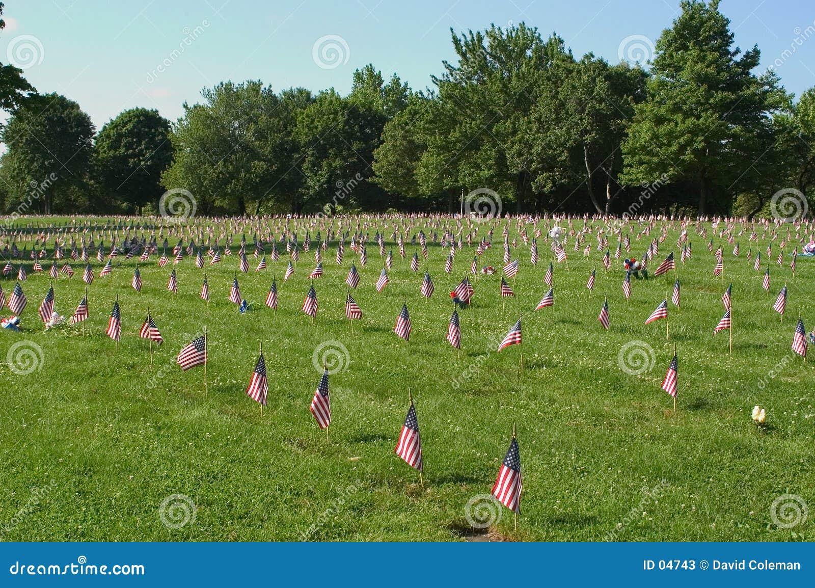 我们切记的退伍军人