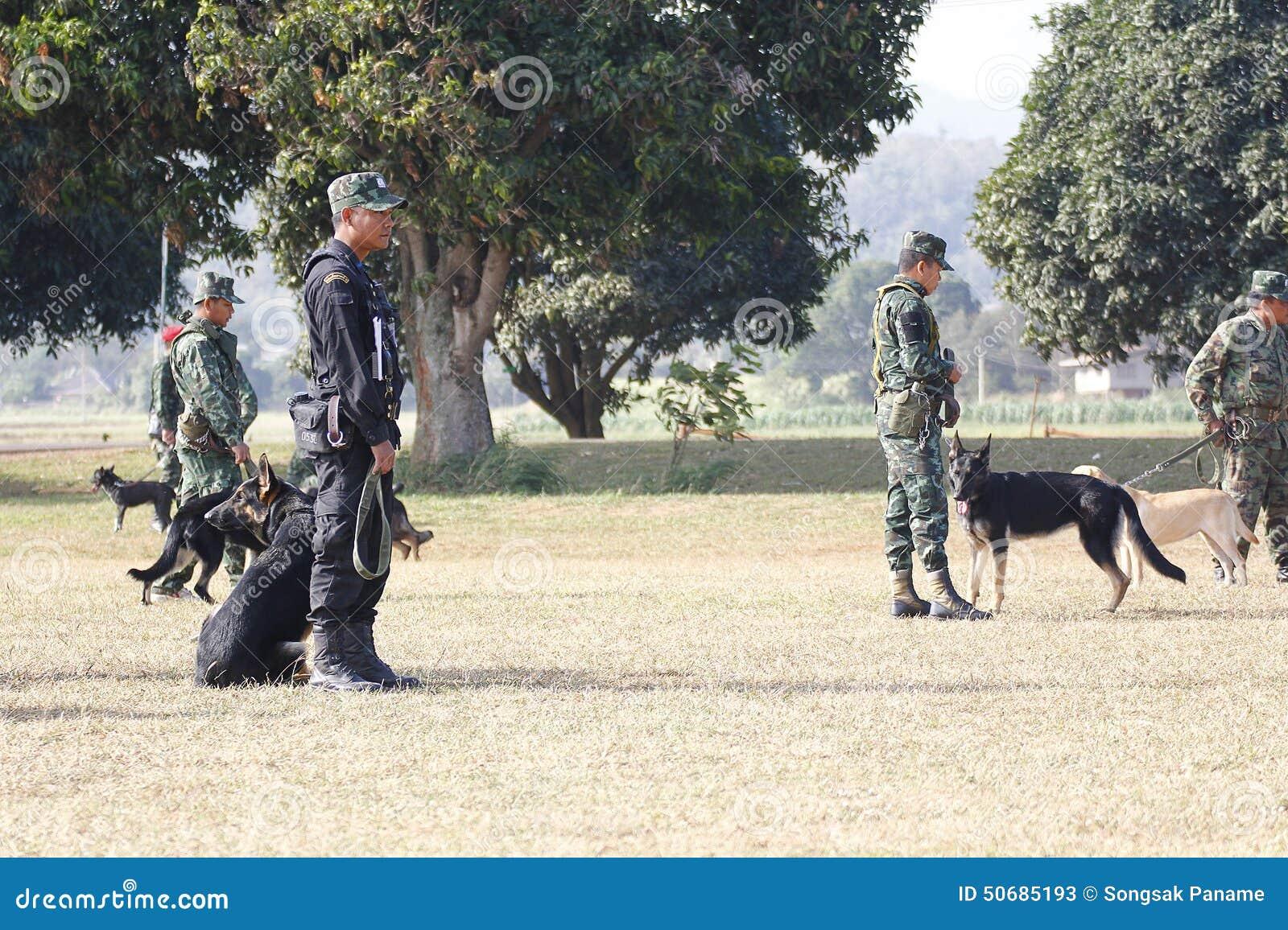 Download 战争训练狗 编辑类库存照片. 图片 包括有 守卫, 统一, 敌意, 证券, 人力, 培训, 被照顾的, 武器 - 50685193