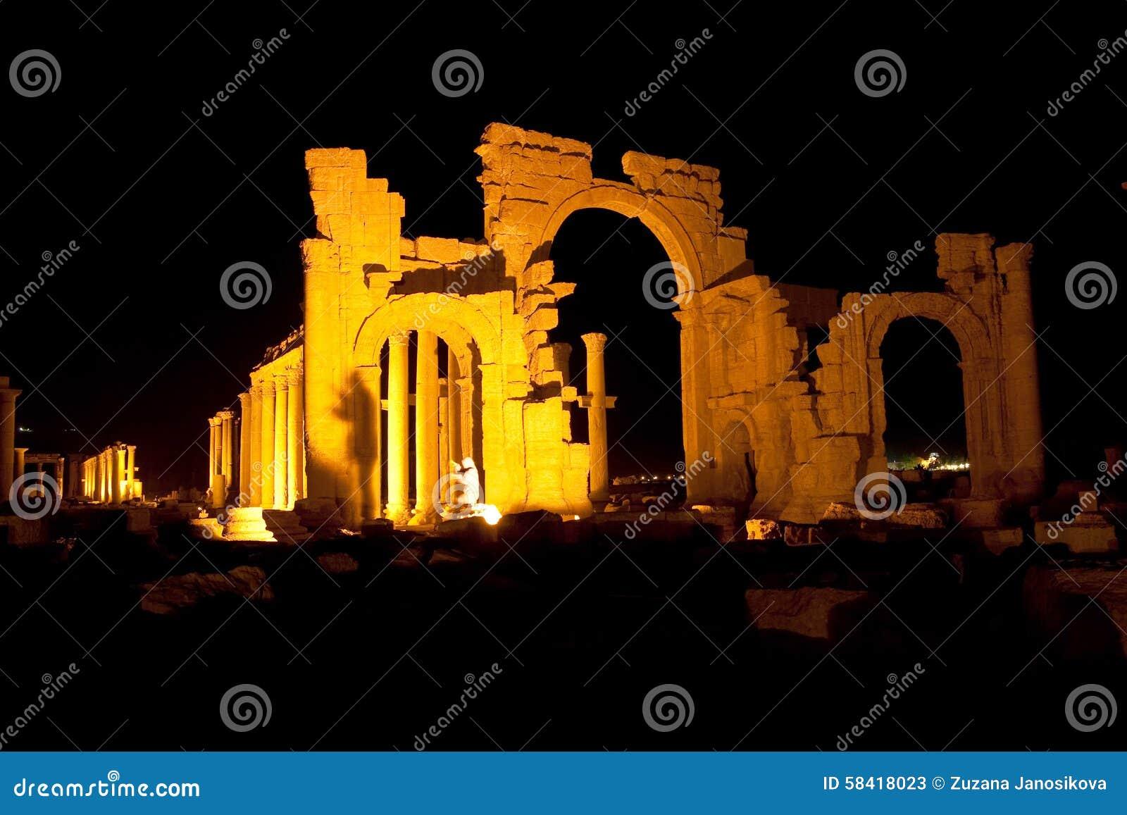 扇叶树头榈-叙利亚古城废墟