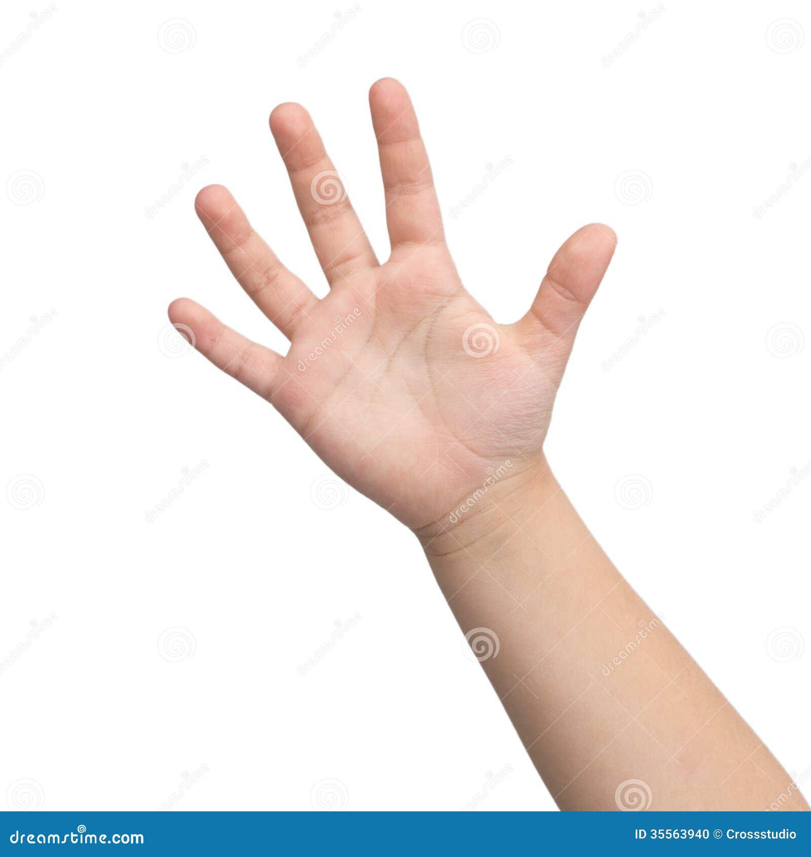 手。孩子的手。