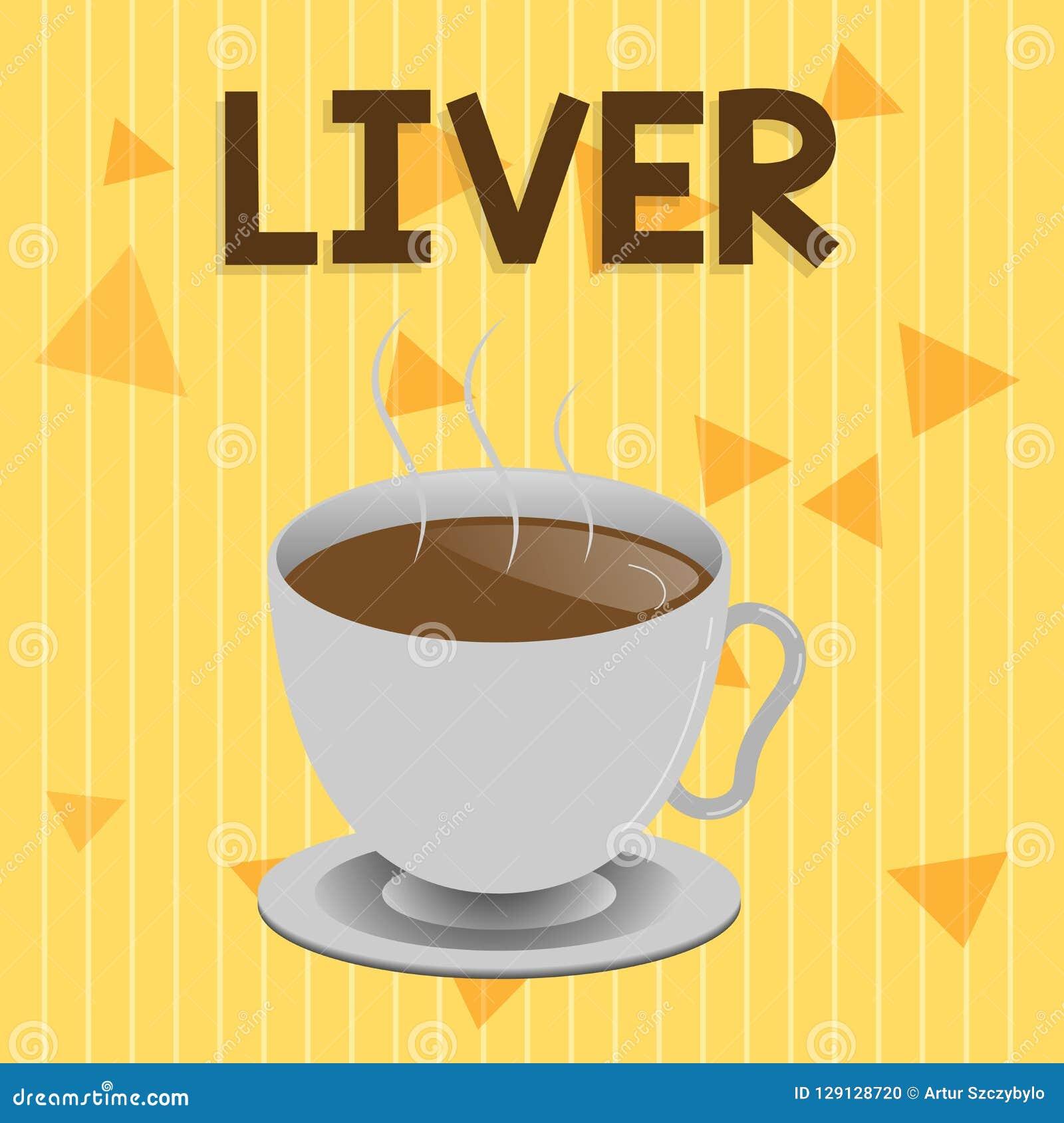手写文本肝脏 意味在脊椎动物的腹部的概念大有裂片的腺器官生产胆汁