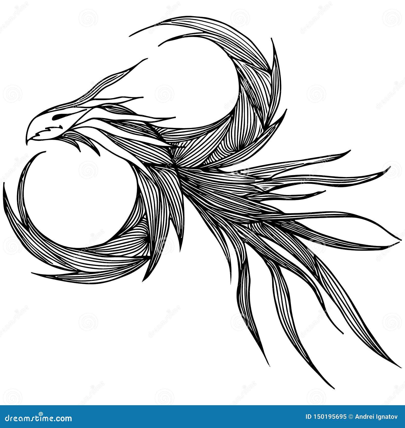 手拉的传染媒介龙例证 意想不到的龙象 神话aminal徒手画的剪影  幻想概述