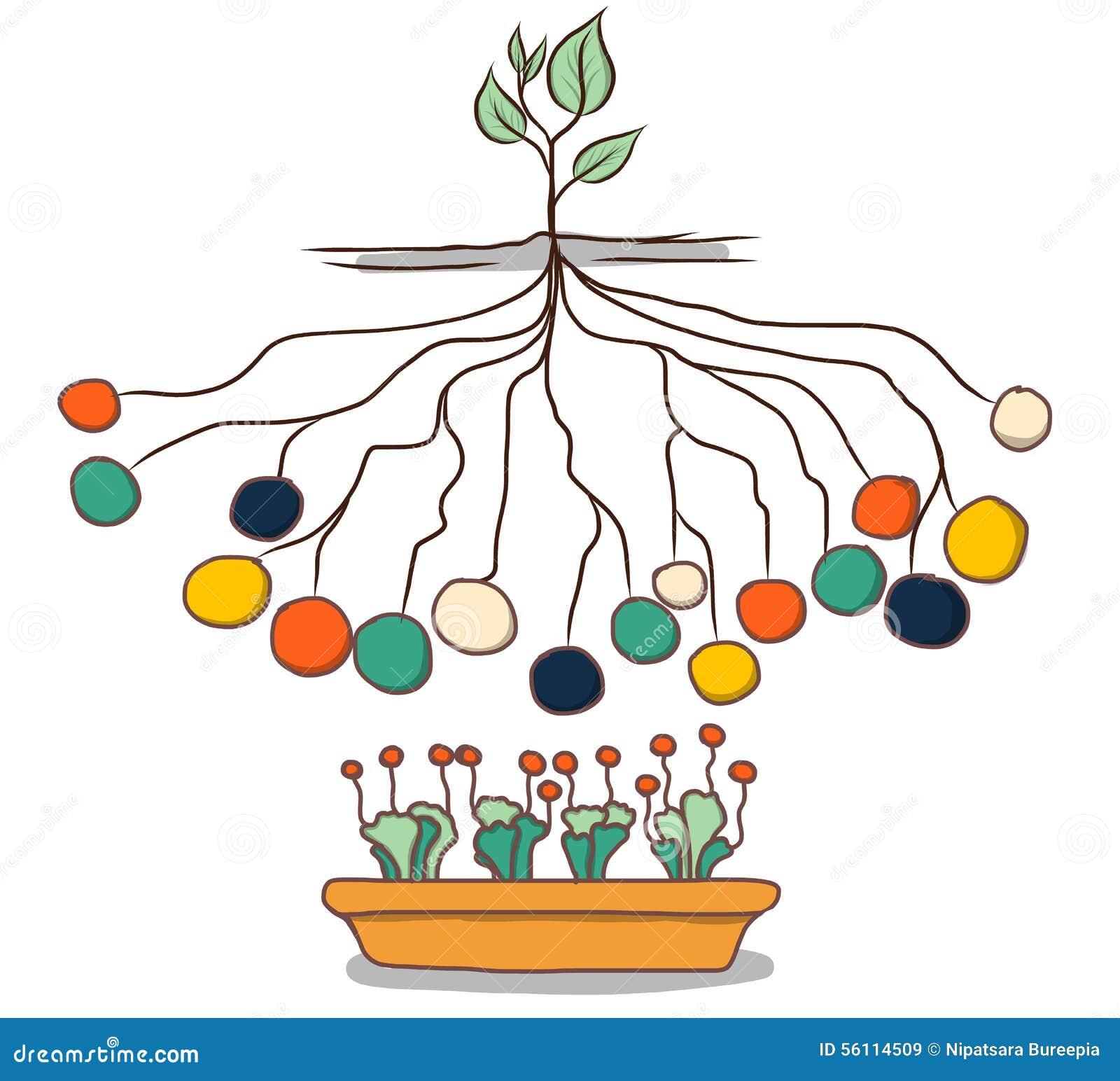 手拉的信息图表模板样式 树形网络