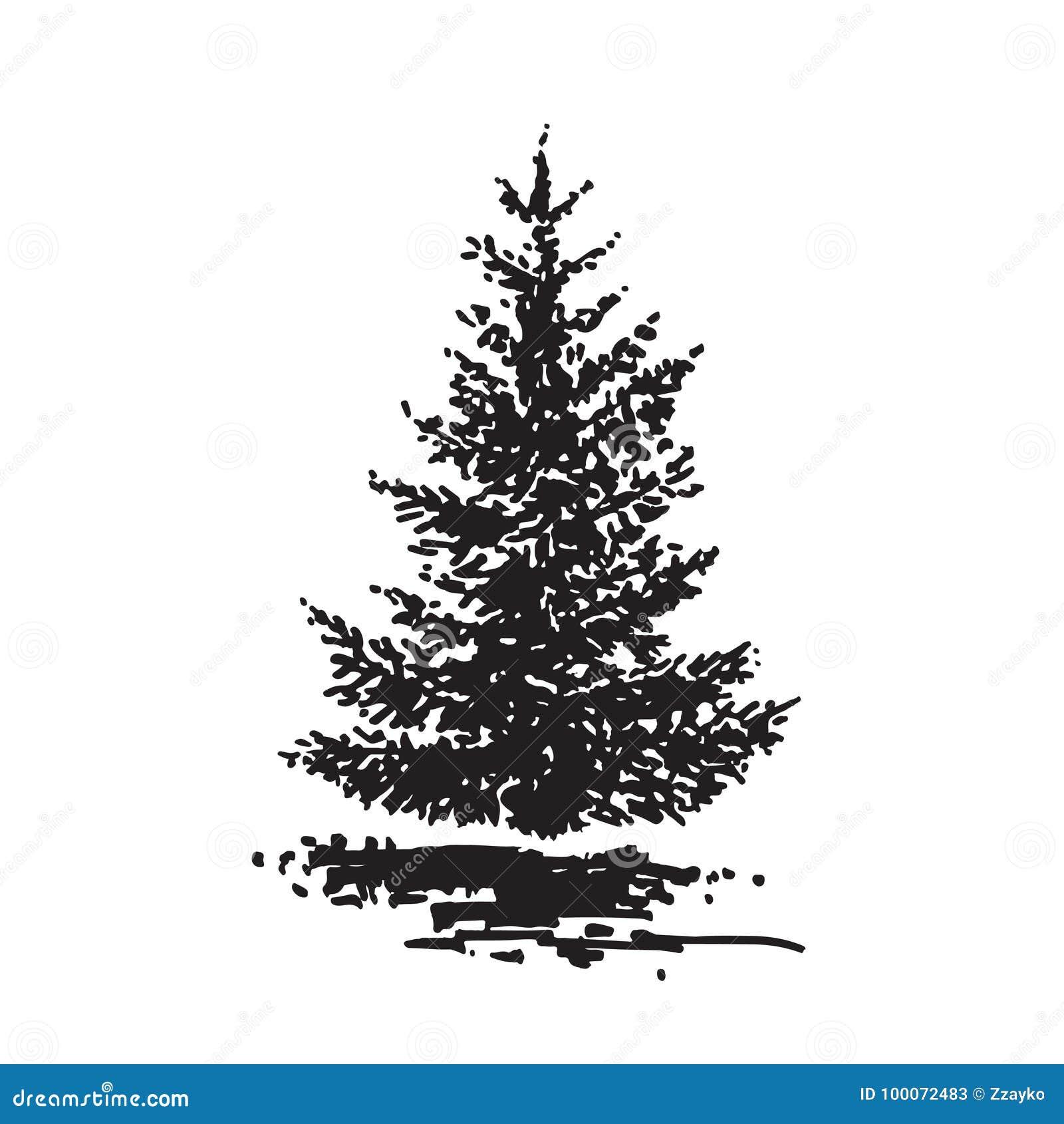 手拉的树,冷杉 黑白现实图象,剪影绘与墨水刷子
