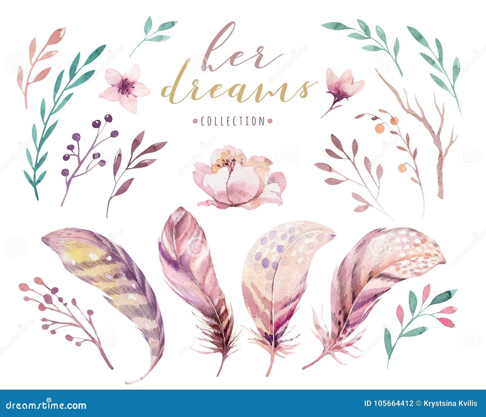手拉的水彩绘画充满活力的羽毛集合 Boho样式玫瑰色翼 在白色查出的例证 鸟飞行好地产的lanscape